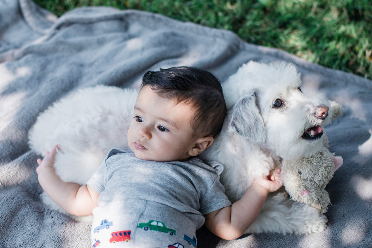 10fotografia-colombia-embarazos-niños-matrimonios-retratos-bogota-familias.jpg