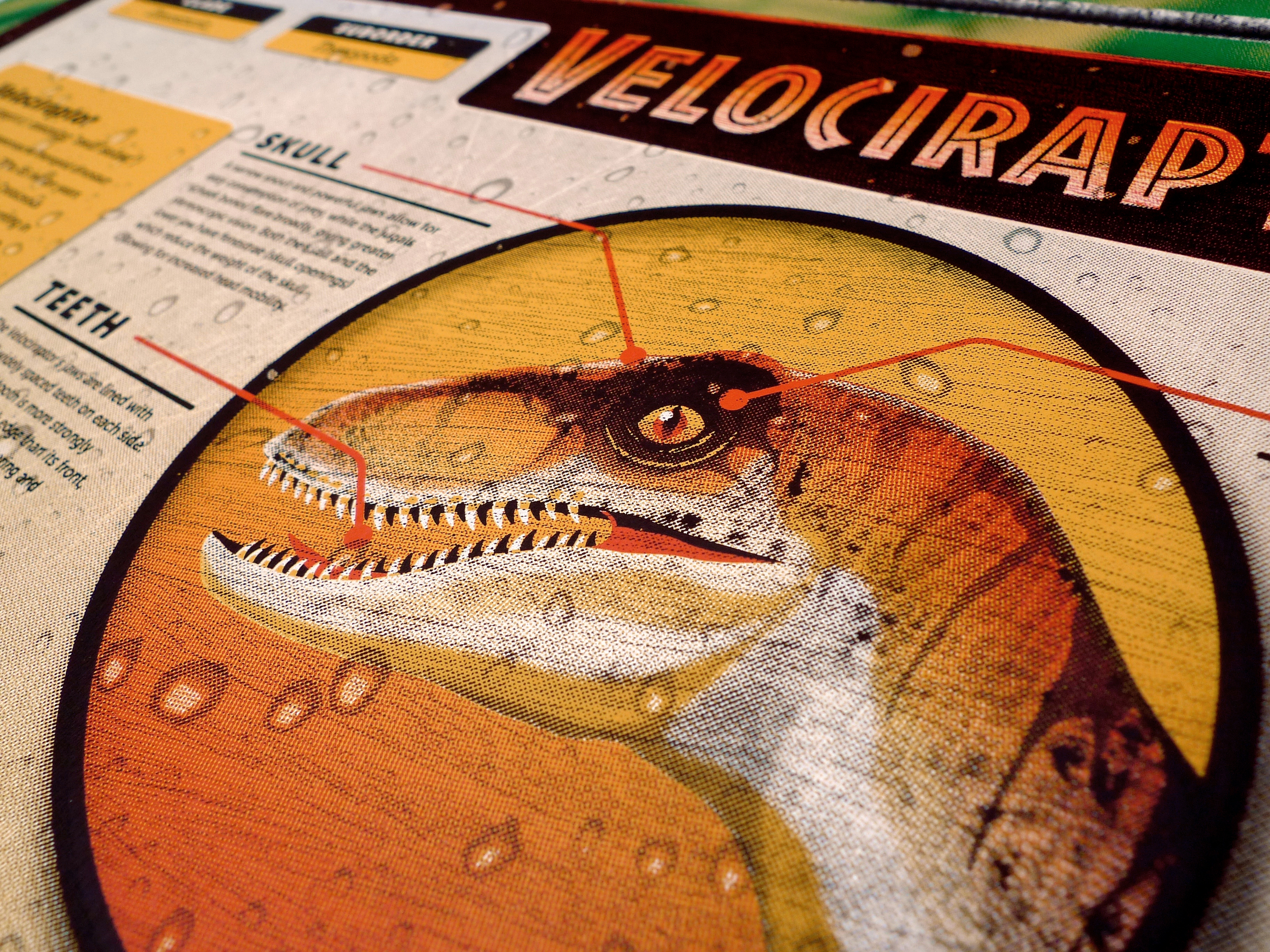 Jurassic Park: Velociraptor Poster by DKNG
