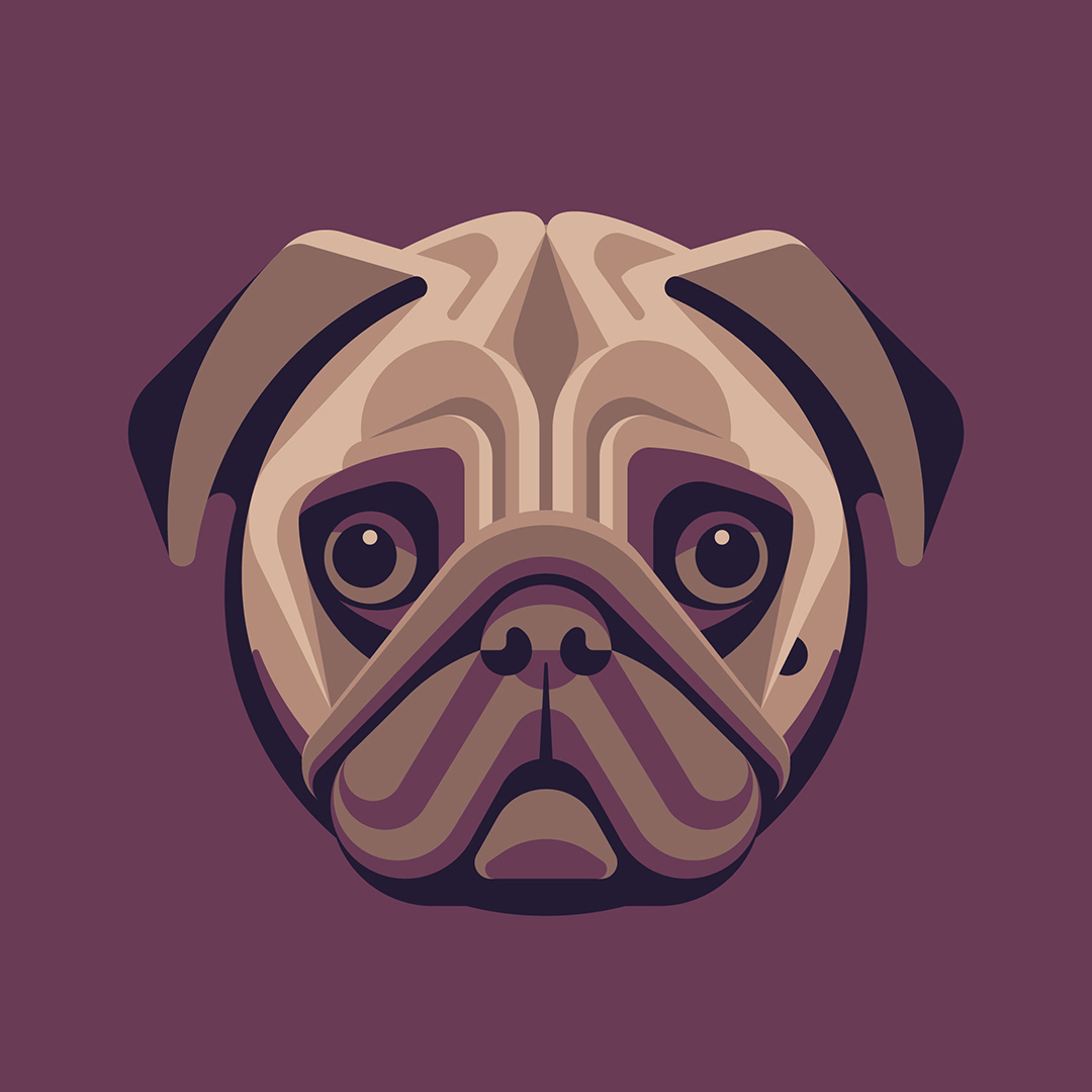 Pug Illustration by DKNG