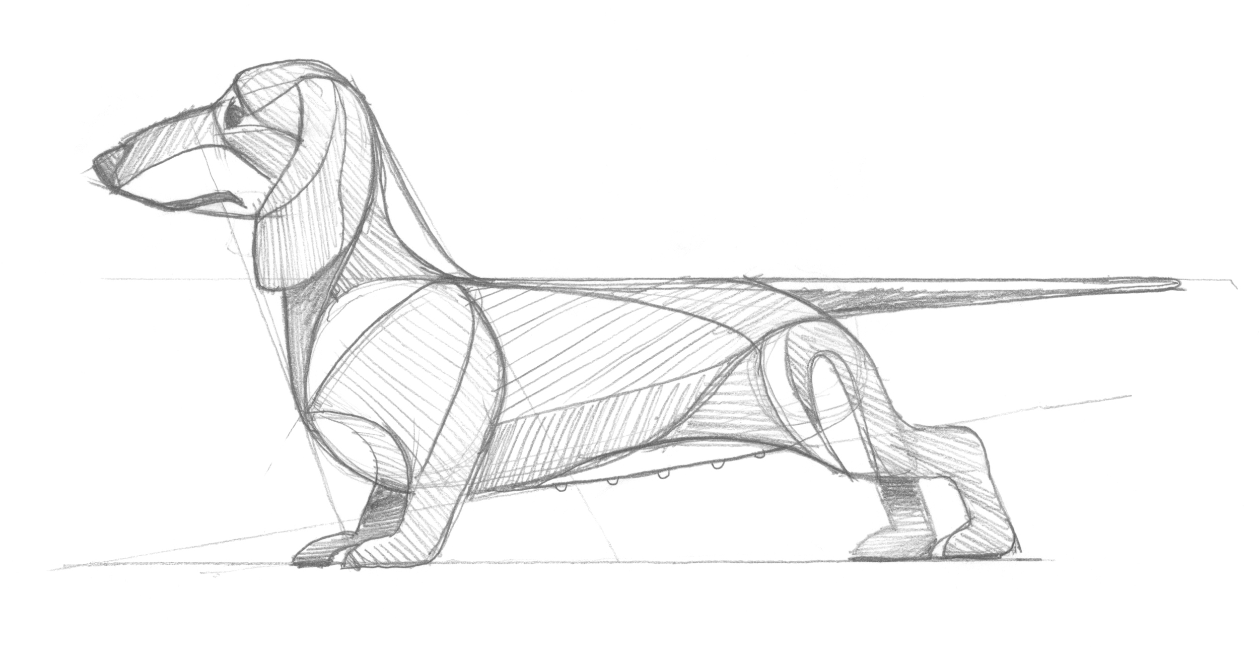 Dachshund Sketch by DKNG