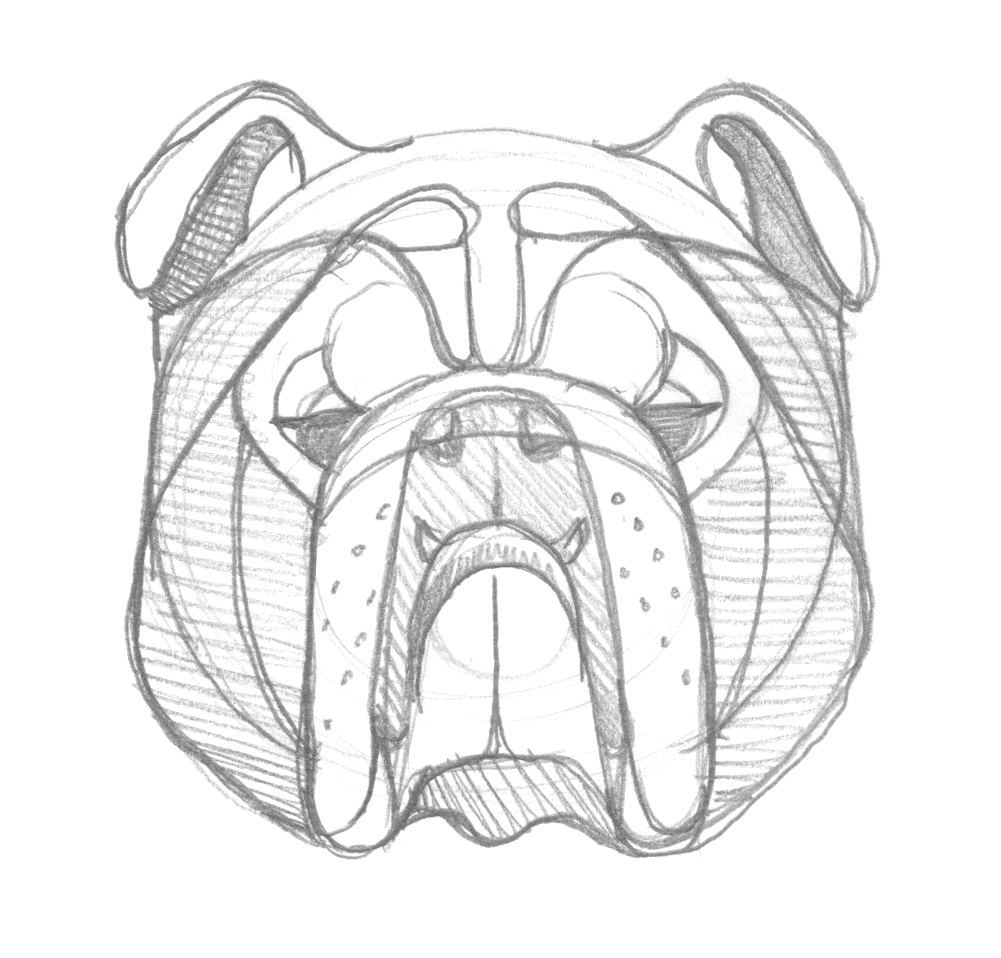 Bulldog Sketch by DKNG