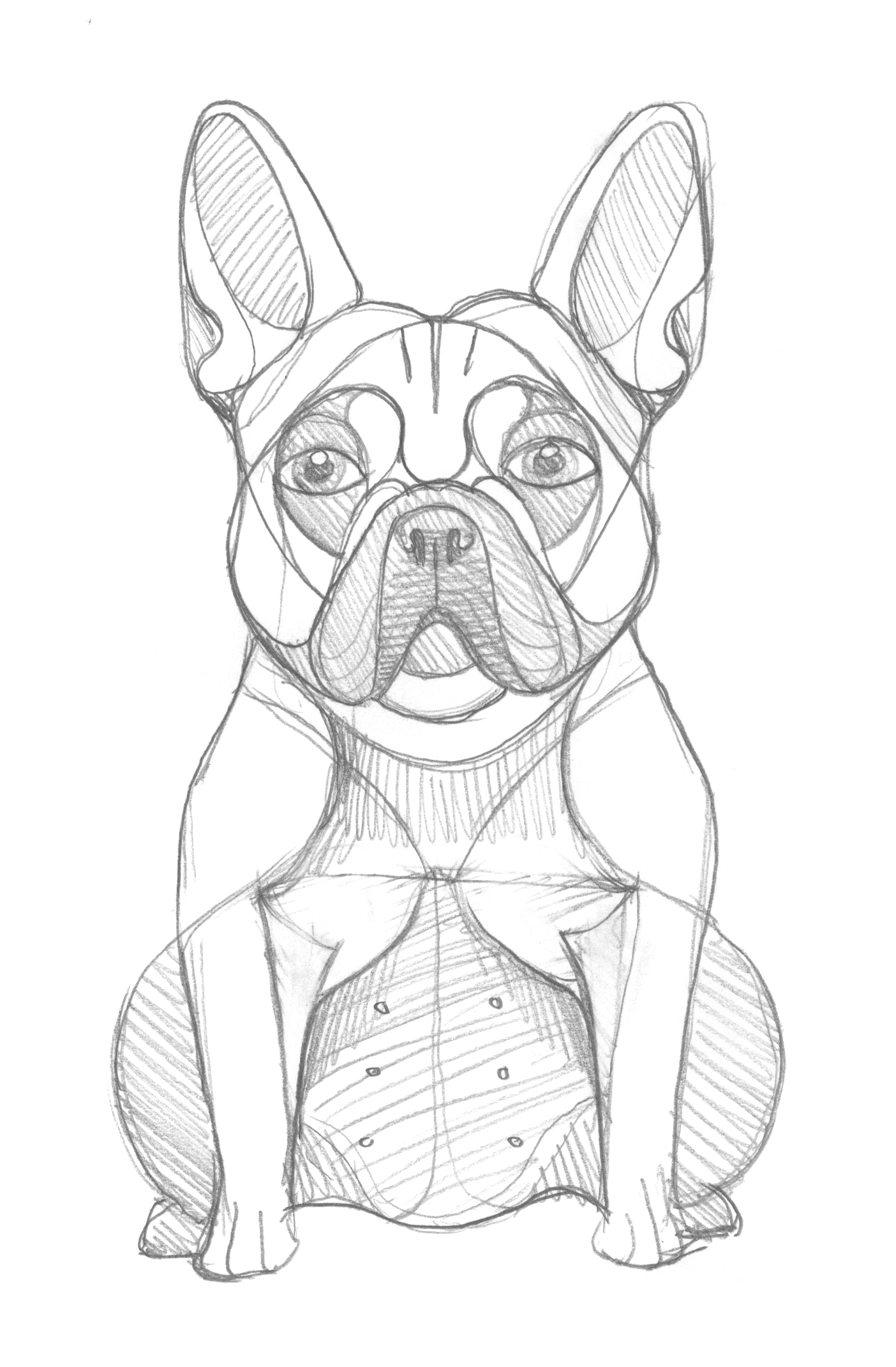 French Bulldog Sketch by DKNG