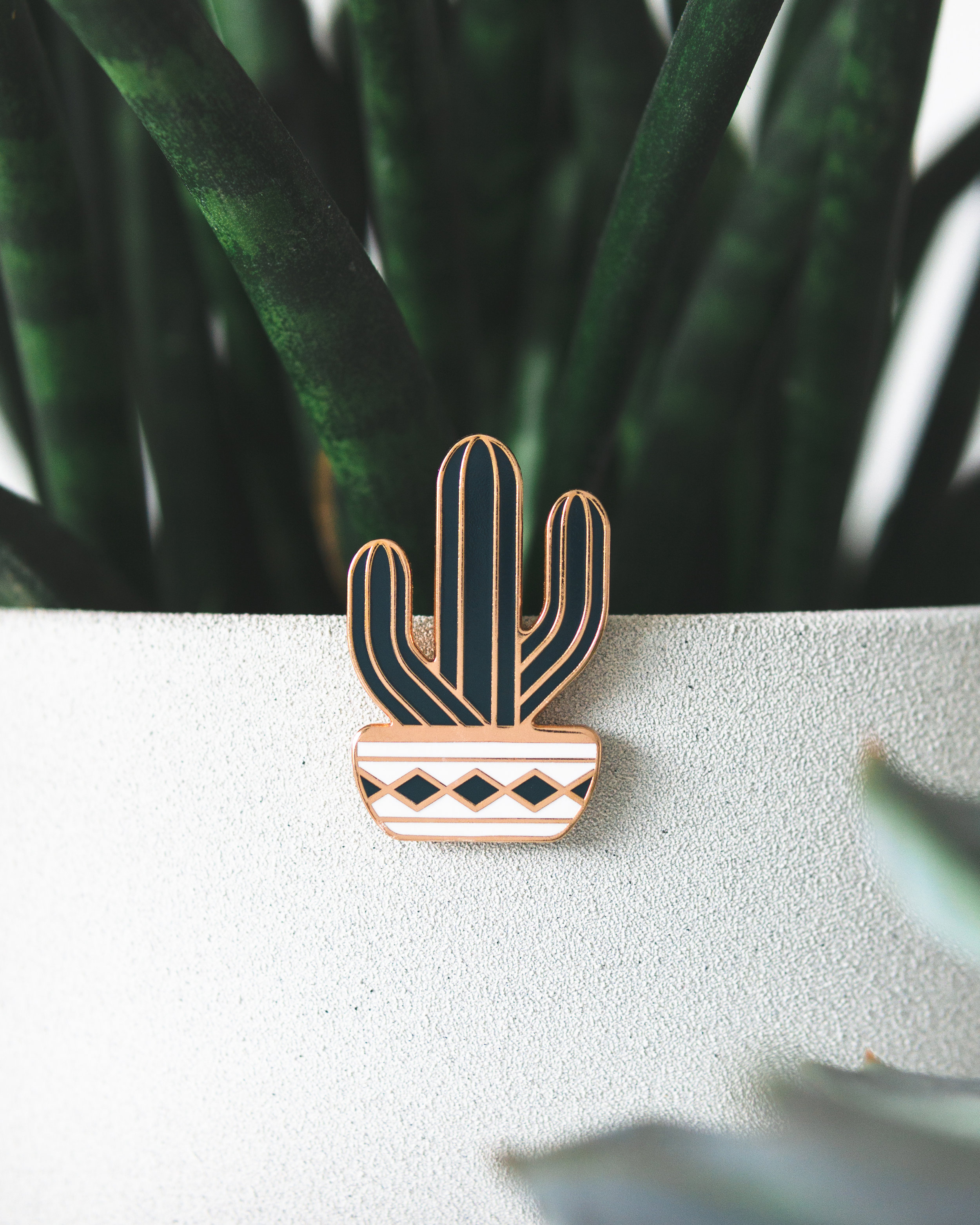 Saguaro Pin by DKNG