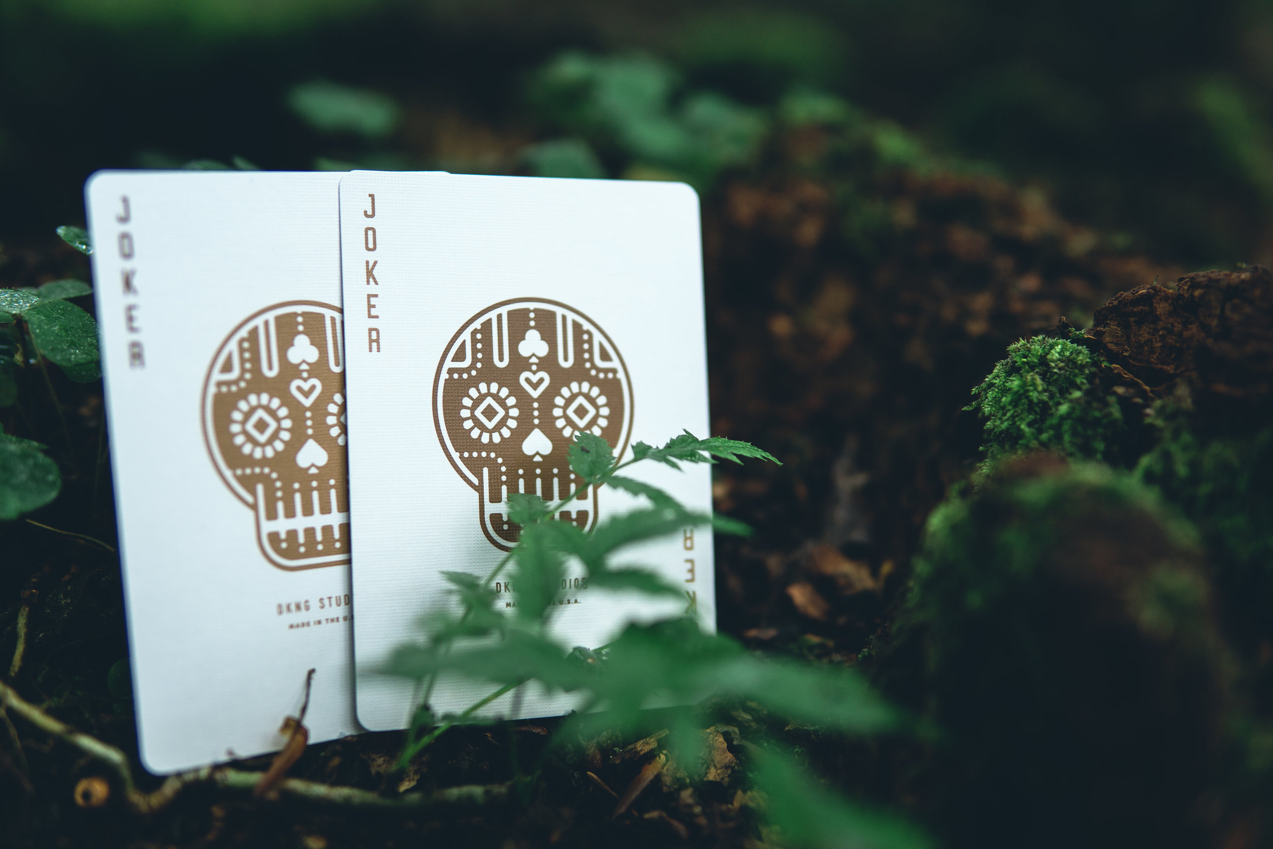 DKNG Green Wheel Playing Cards photographed by Wonderful Mystical