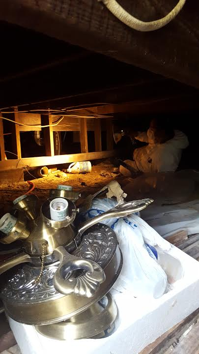 At Home Safe Inspections understands the importance of a well maintained crawlspace area and the effects to the rest of the structure. A close inspection of the crawlspace is an essential part of our complete general home inspection for pier and beam foundation. As shown in this picture of Diego inspecting a crawlspace