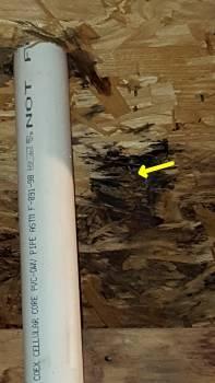 Roof leak detected