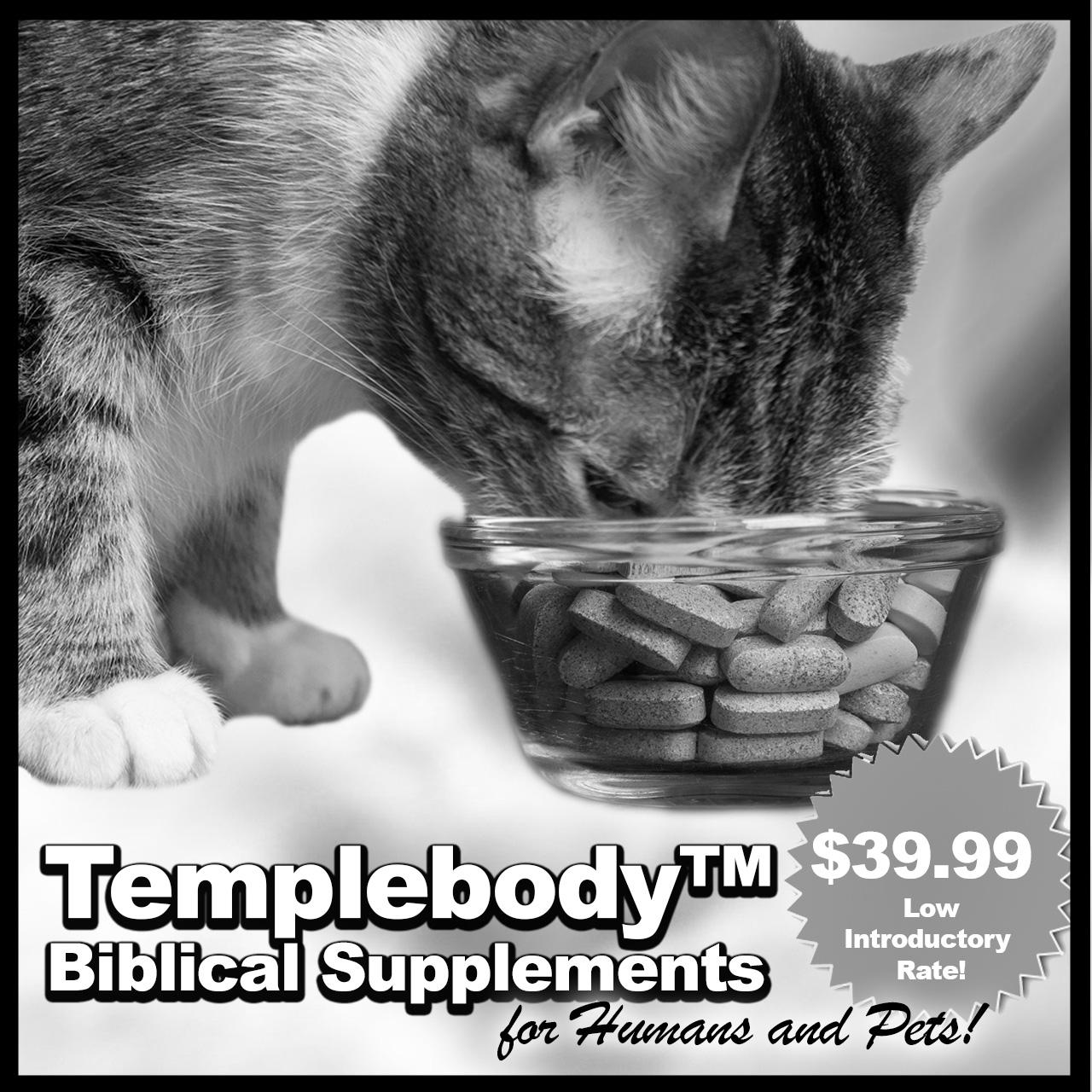 140409CN_Ad_Templebody_v1.jpg