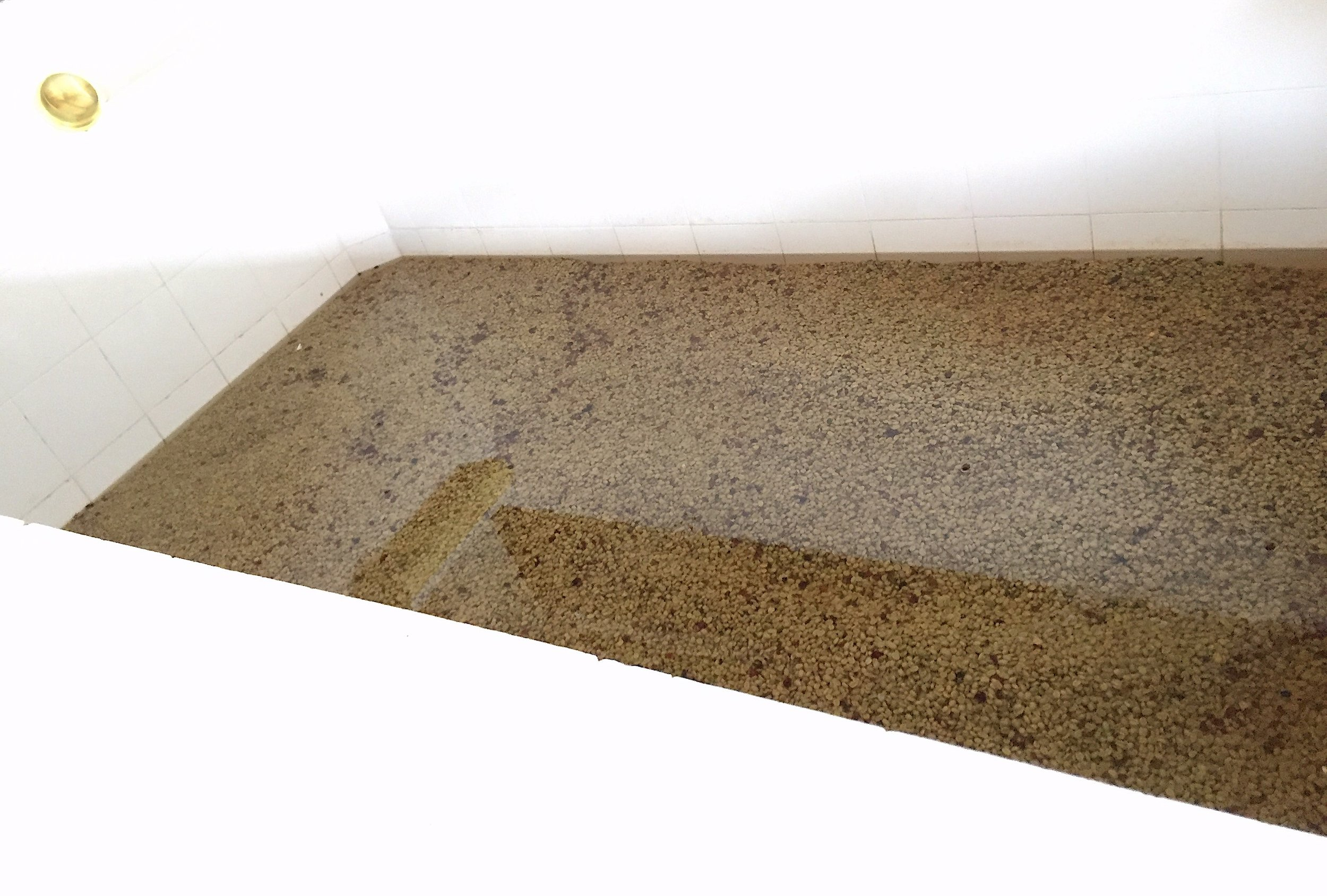 *fermentation tanks.JPG