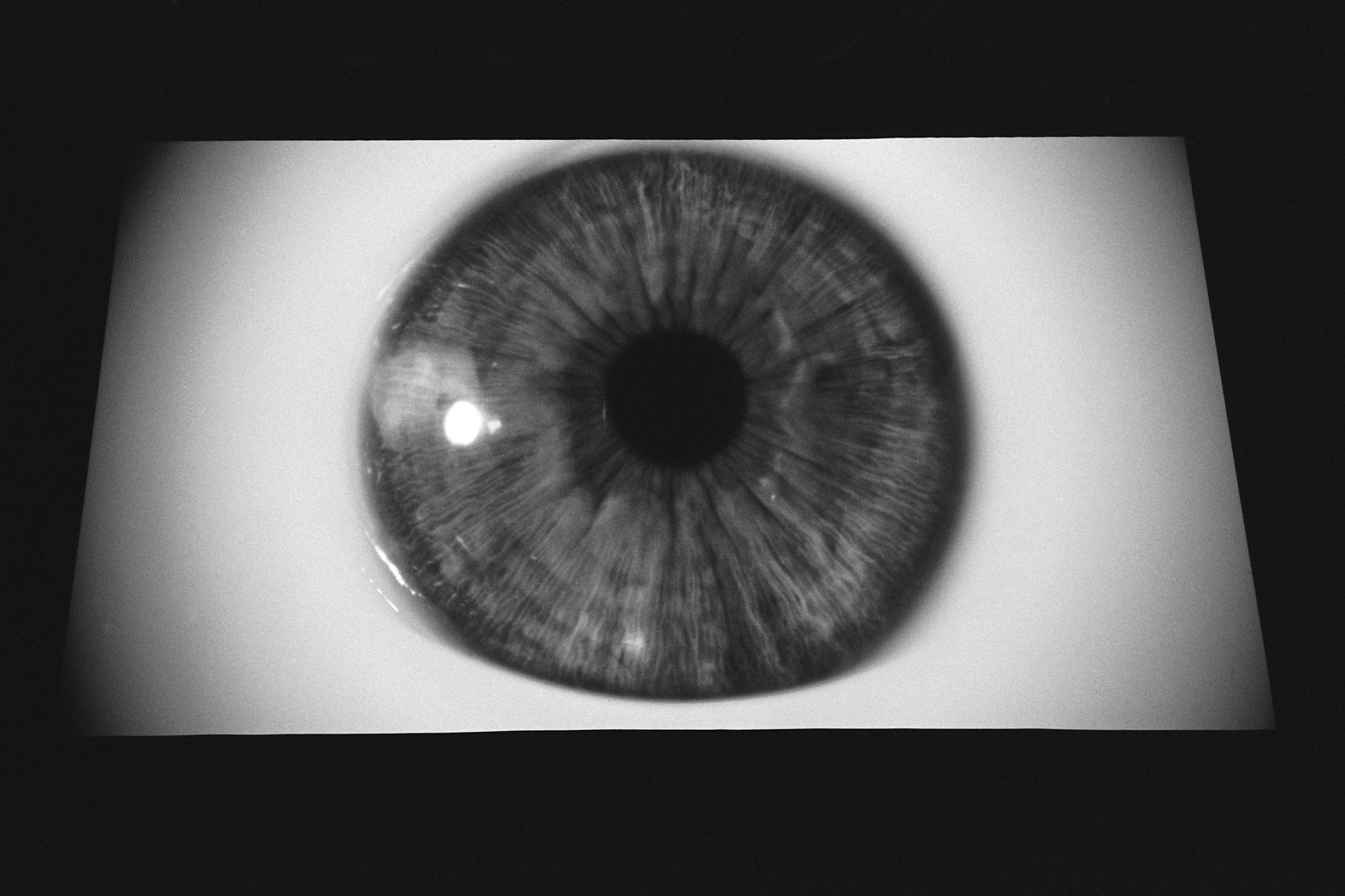 EyeballOnScreen-.27.2014.jpg