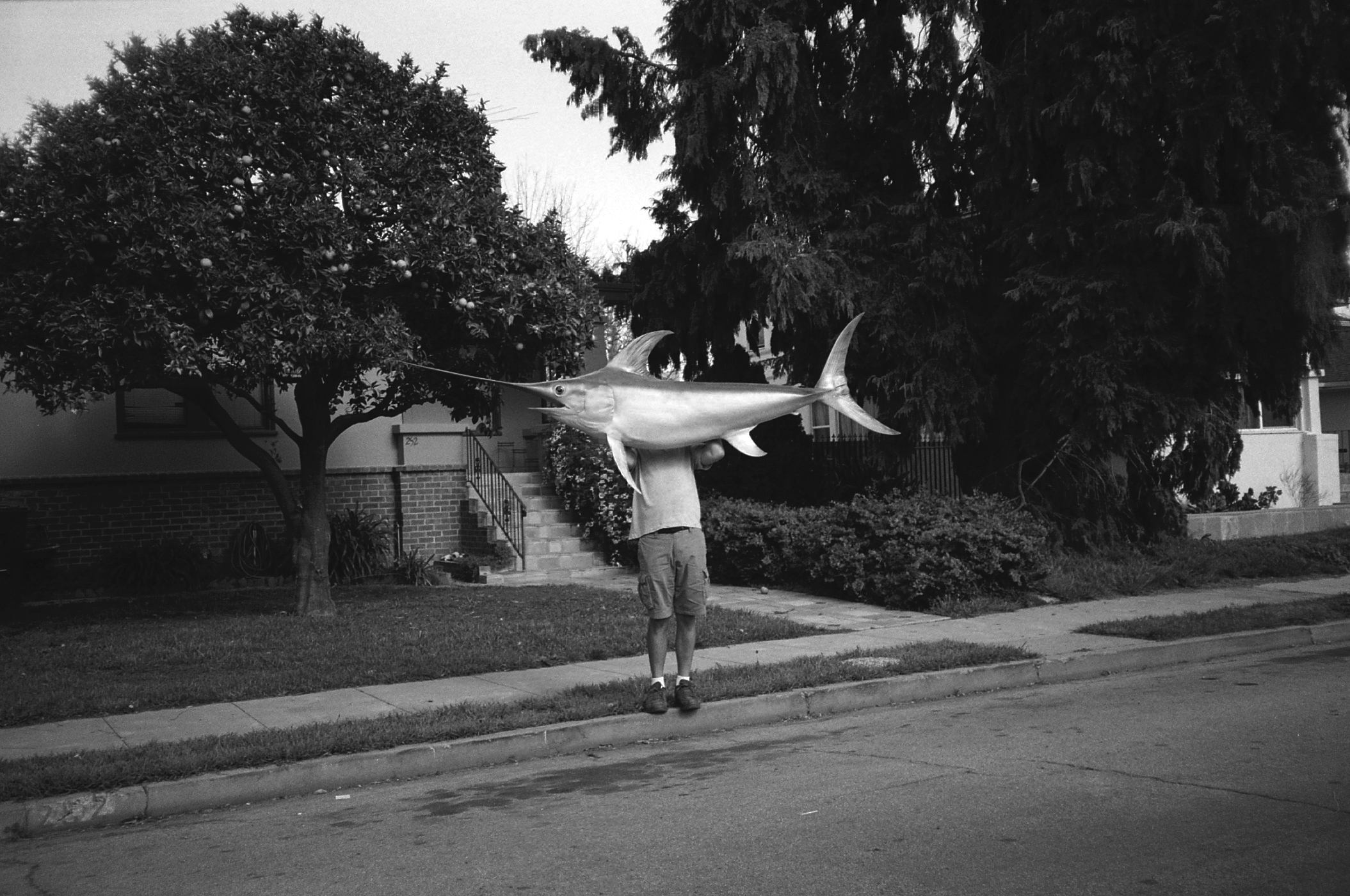 BenHoldingSwordfish-31.7.2015.jpg
