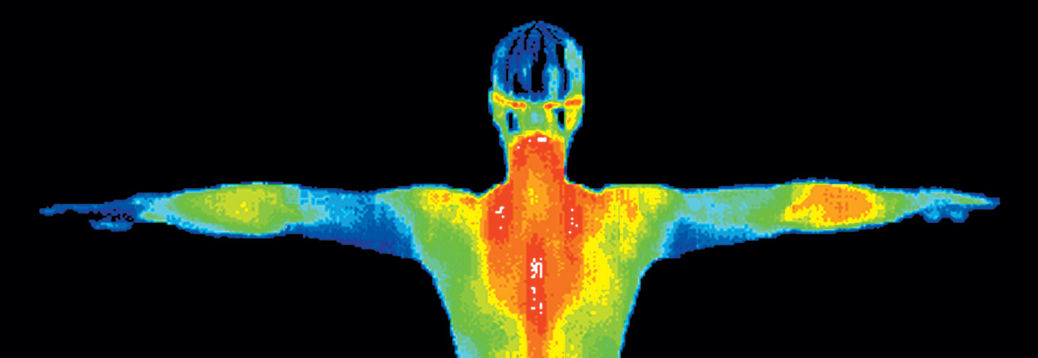 Heat Map Upper Body.jpg