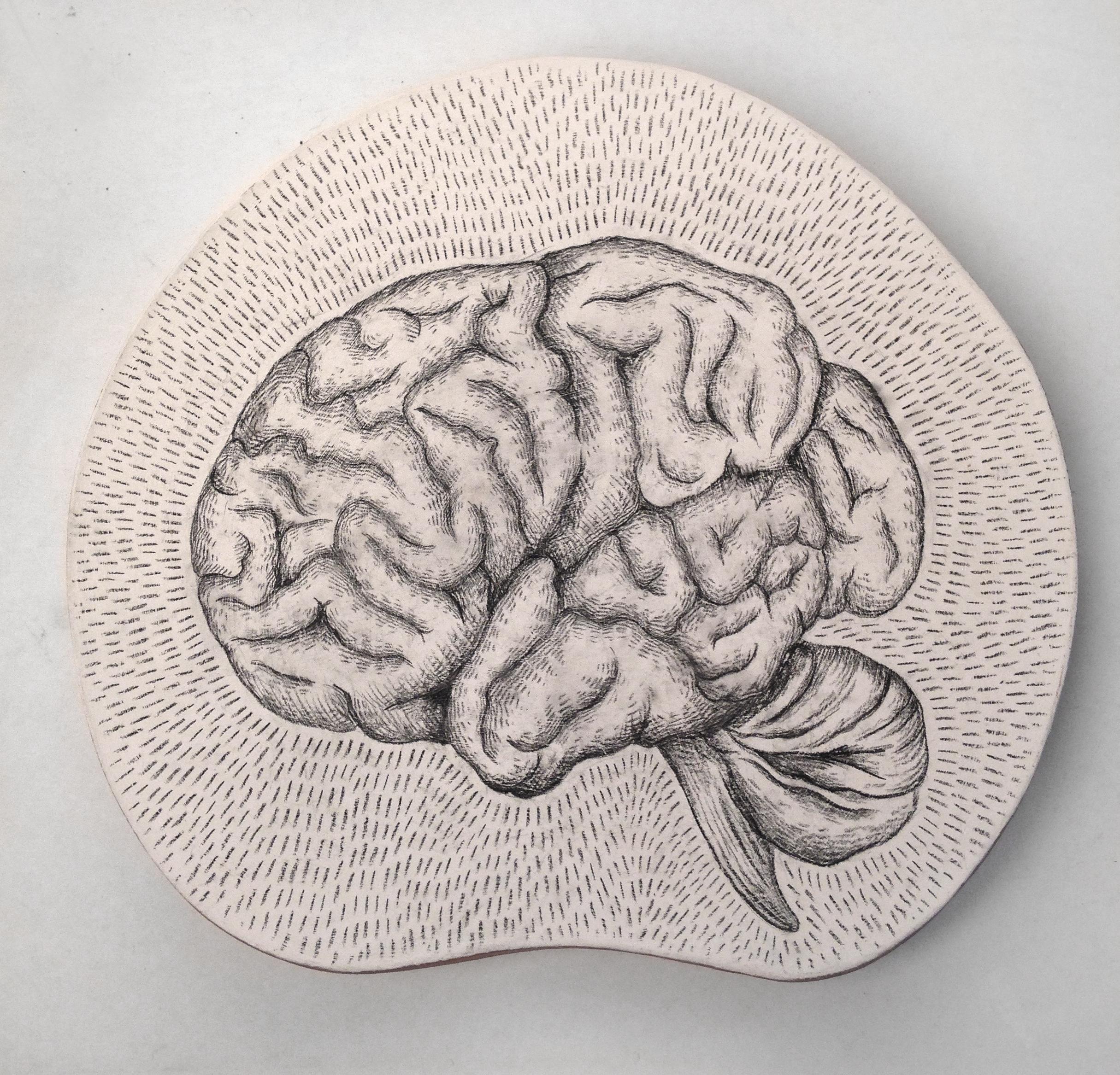 Brain platter