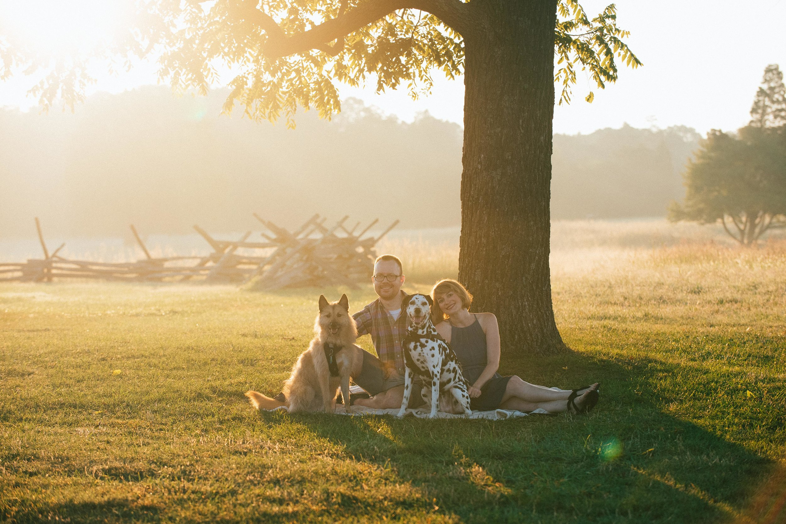 Manassas Battlefield engagement photos with pets