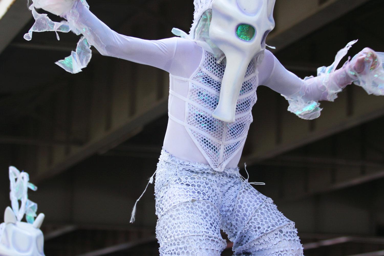 seahorse8.jpg