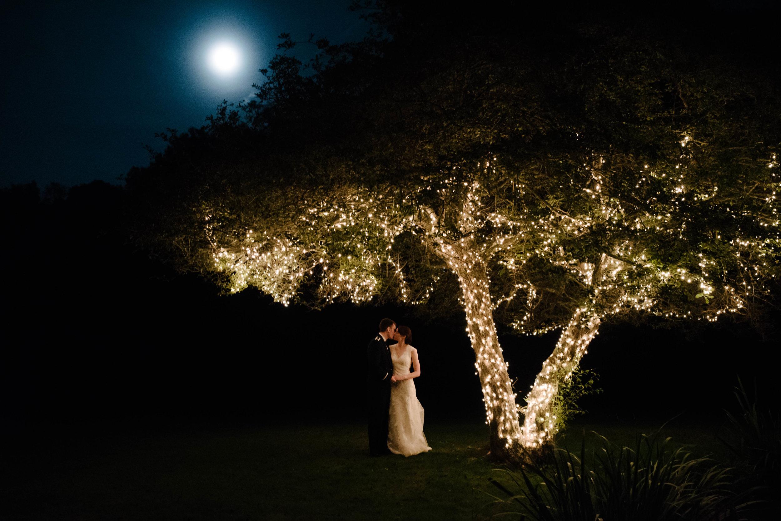 Green Gables Night Wedding Bridal Portrait