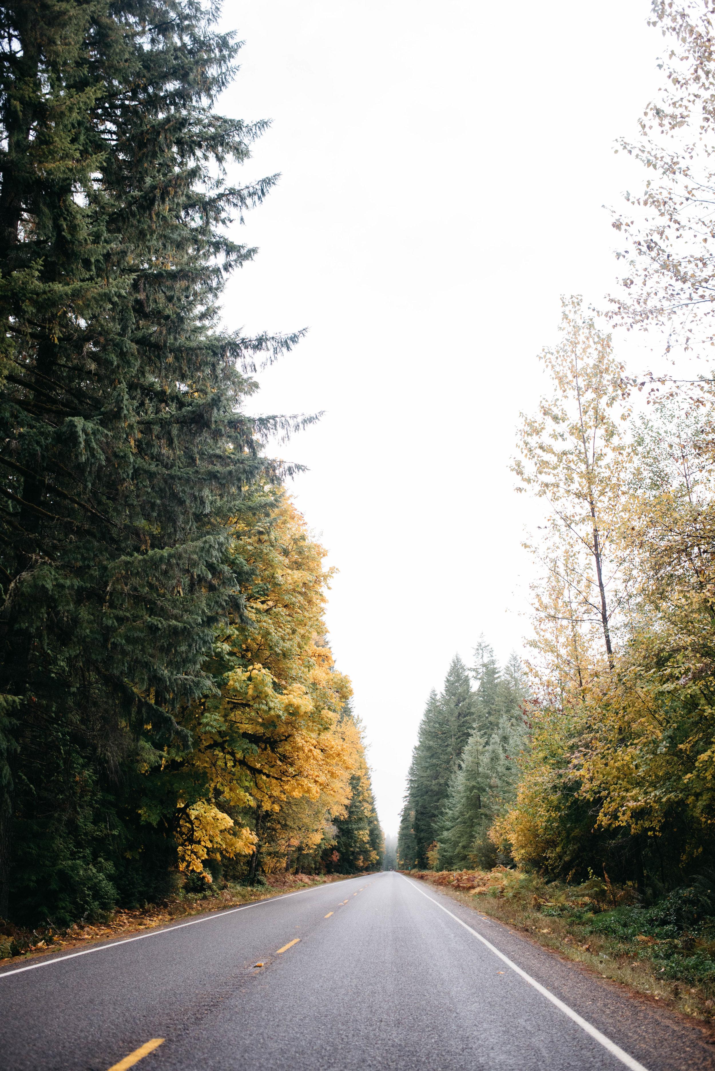 Seattle Travel Photographer, travel photography-16.jpg