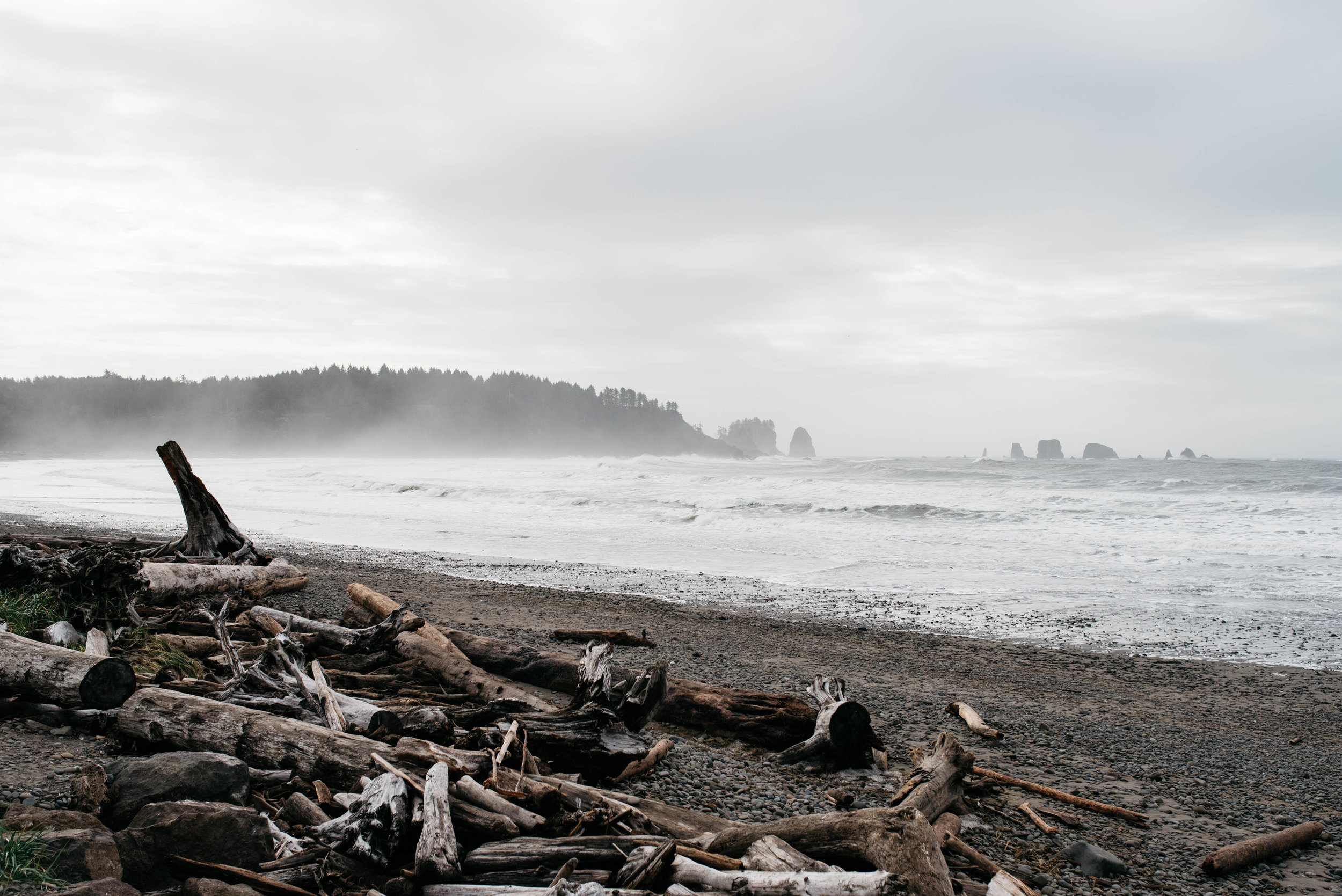 Olympic National Park, travel photography, mariah fisher-3.jpg