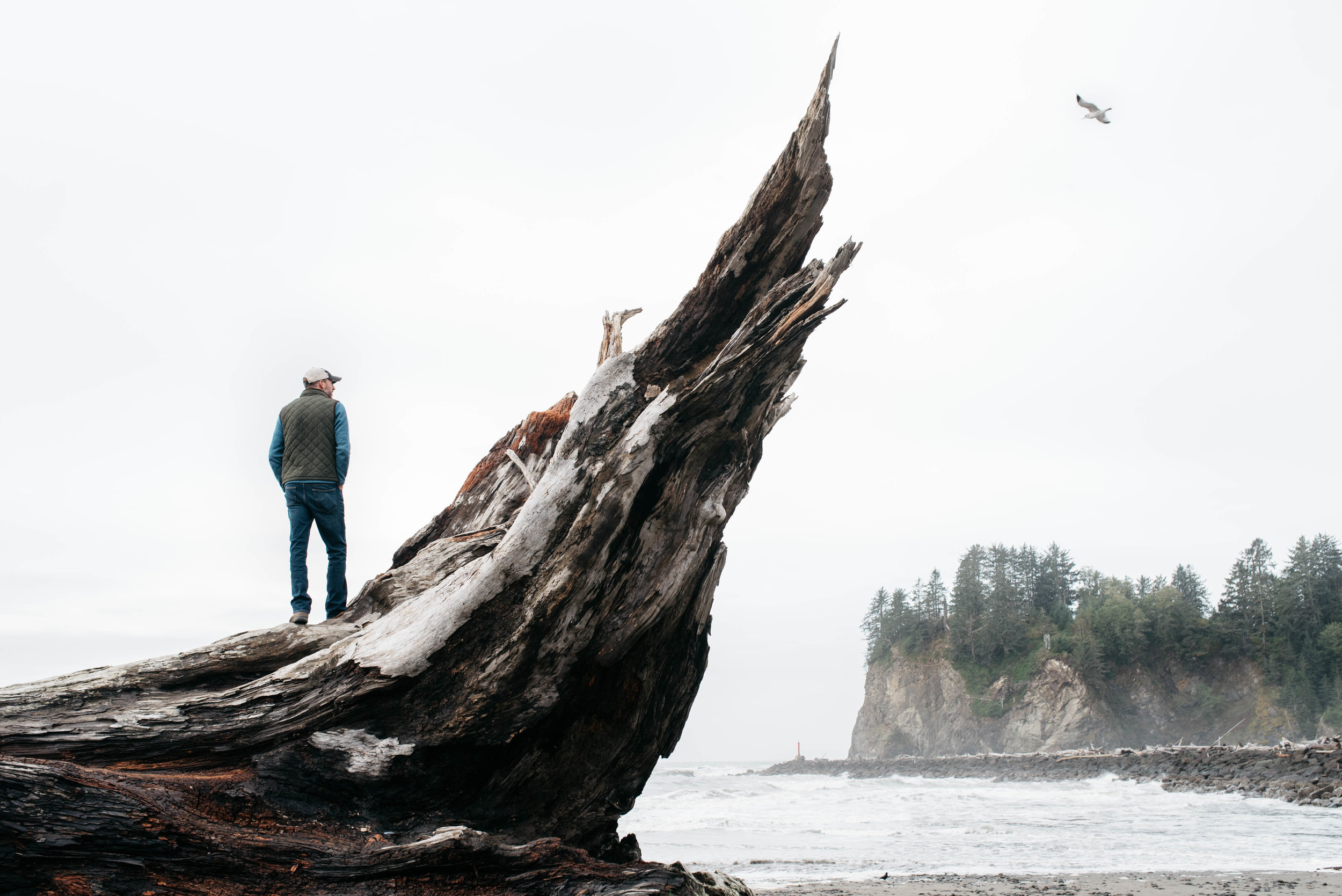 Olympic National Park, travel photography, mariah fisher-4.jpg