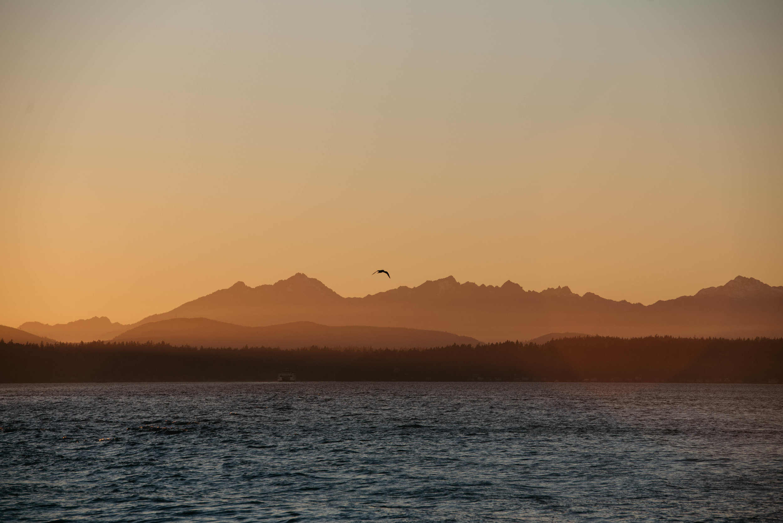 Seattle Ferry Travel photography mariah fisher-4.jpg