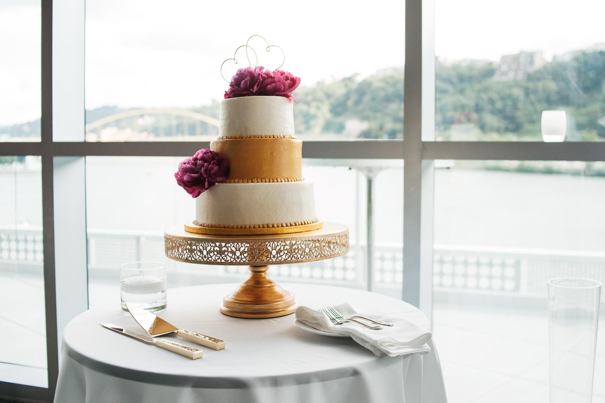 Carnegie Science Center Wedding, cake Pointview Hall, Pittsburgh wedding Mariah Fisher-0348.jpg