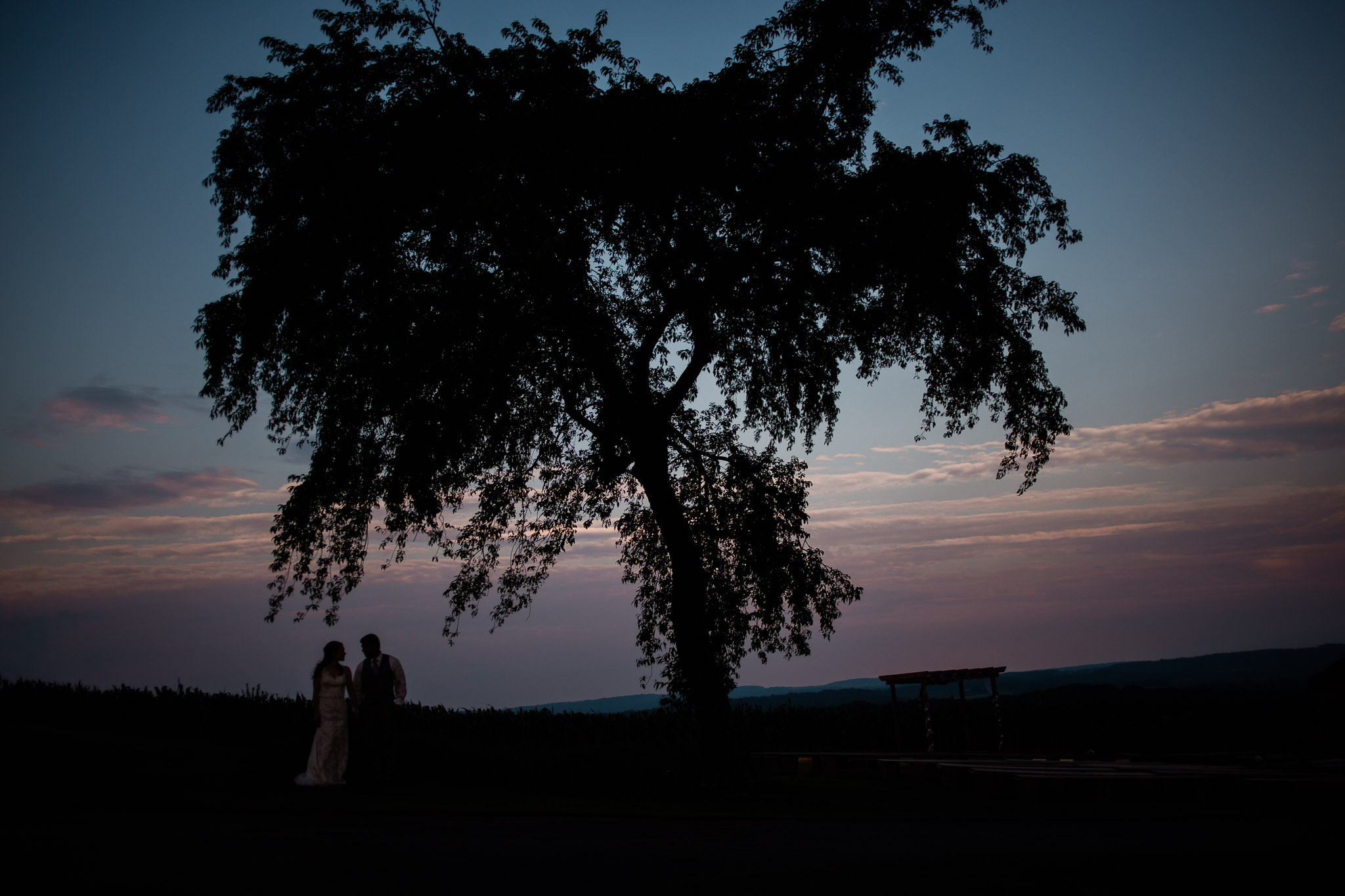 Sunset Wedding Portraits, Pittsburgh Wedding Photographer, The Event Barn at Highland Farms, Somerset PA-7008.jpg