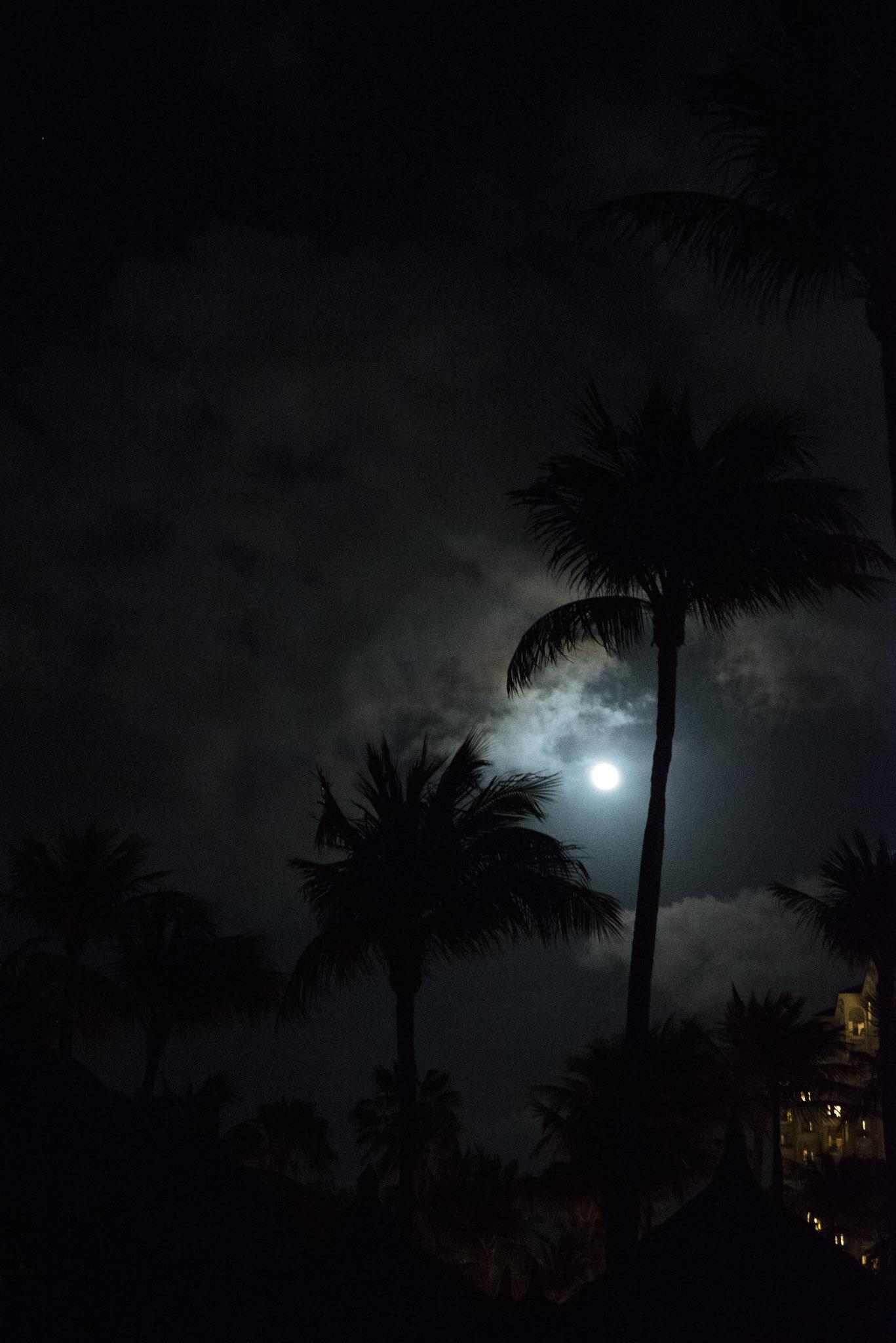 Aruba vacation-6578.jpg