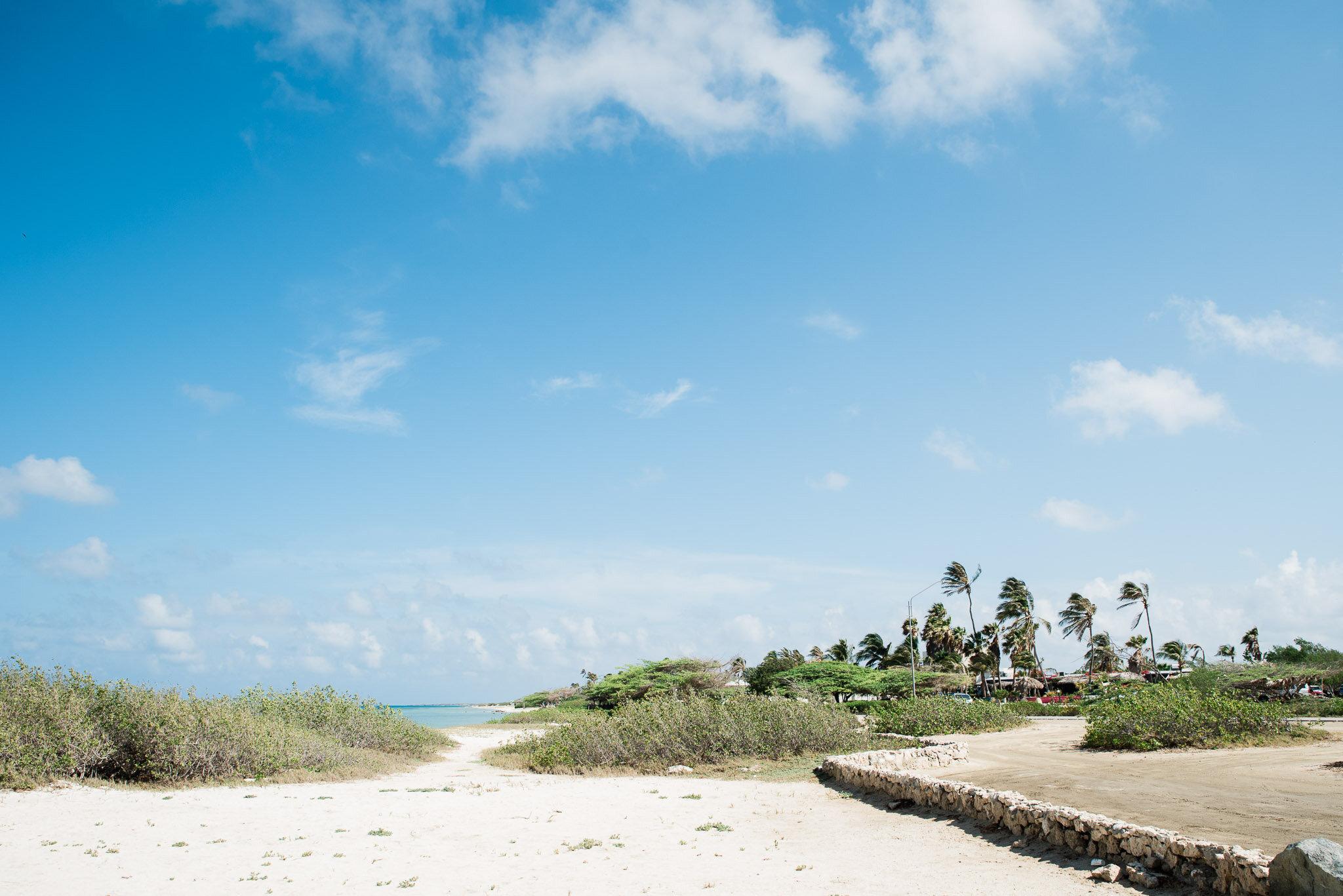 Aruba vacation-6643.jpg