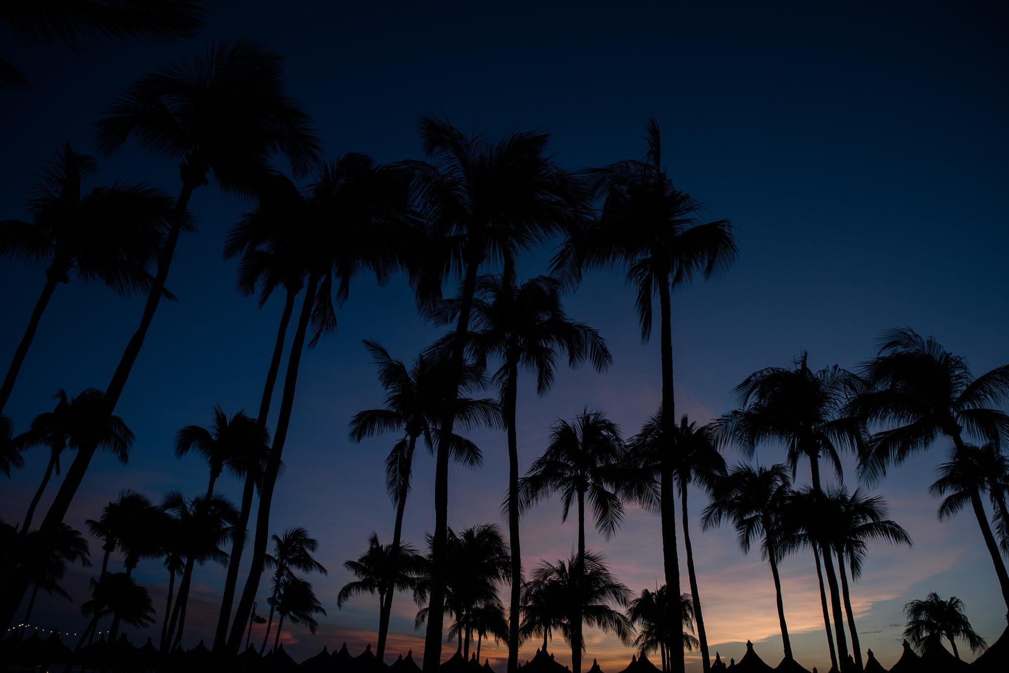 Aruba vacation-6732.jpg