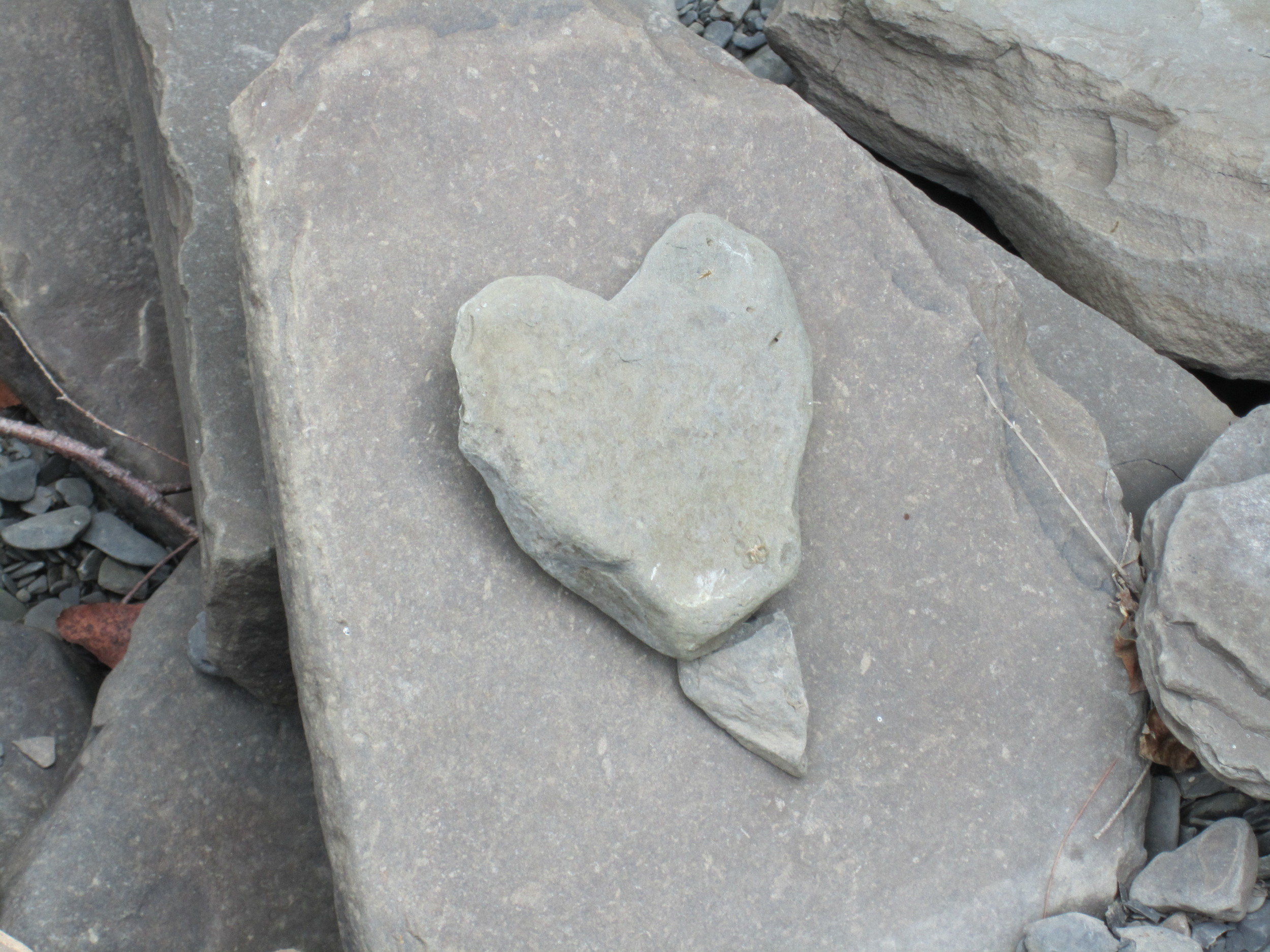"""Practices to """"awaken and heal the heart"""" (quote by Cynthia Bourgeault)"""