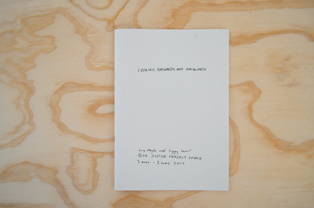 Looking Forwards and Backwards Publication, Lucy Meyle and Ziggy Lever, Looking Forwards and Backwards, Blue Oyster Art Project Space, 2017