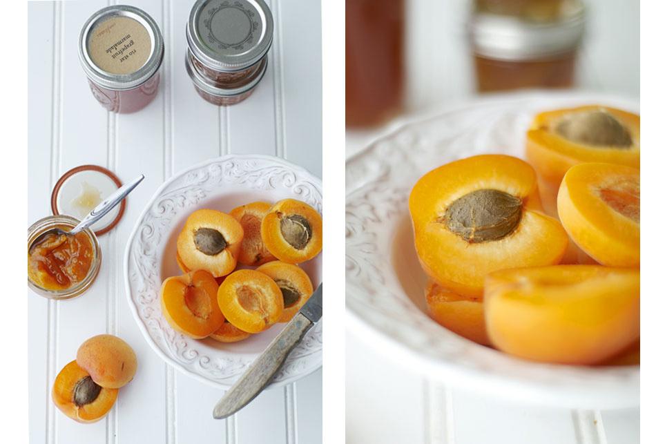 d253f3d2580e2c20-apricot4.jpg