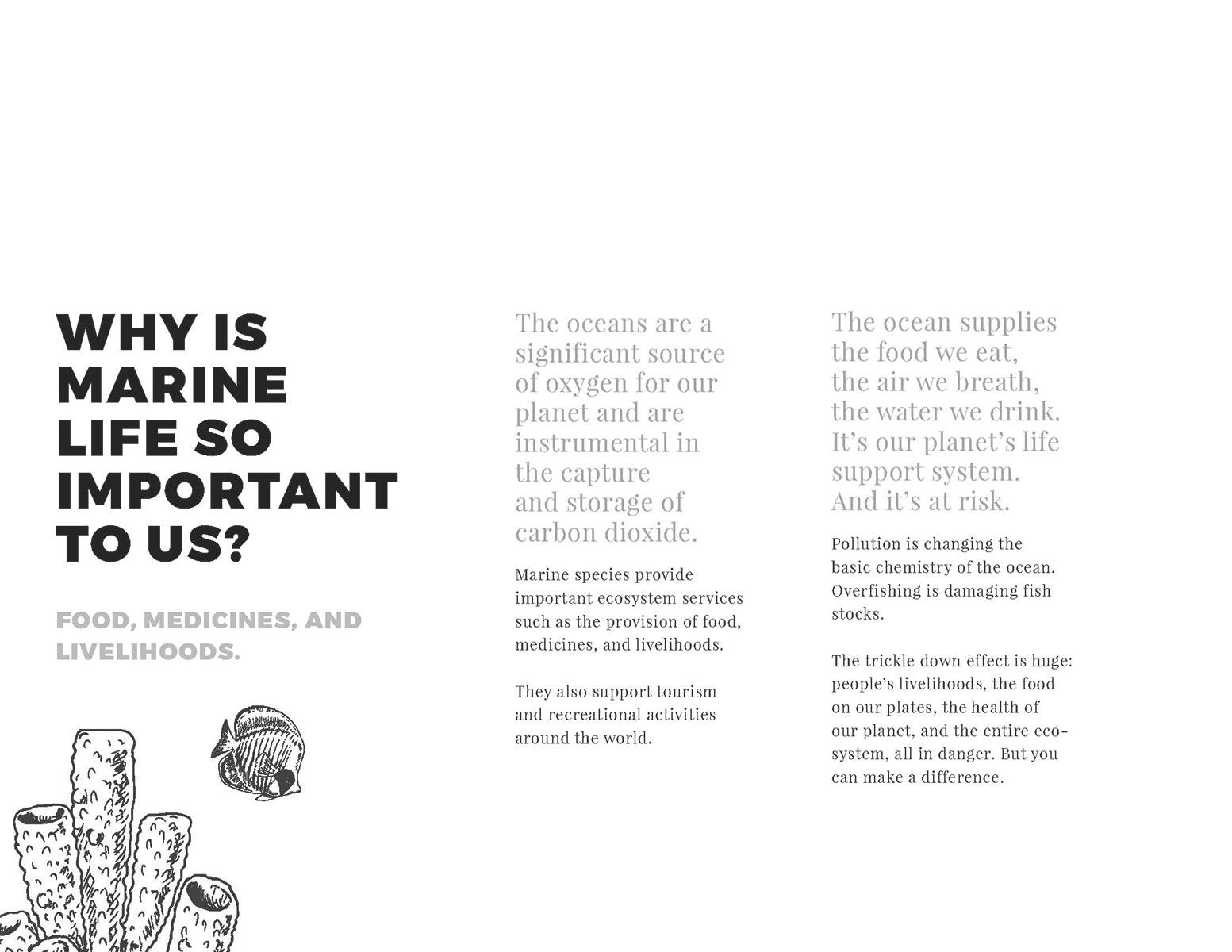 V4-TedTalk-Slideshow_Page_03.jpg