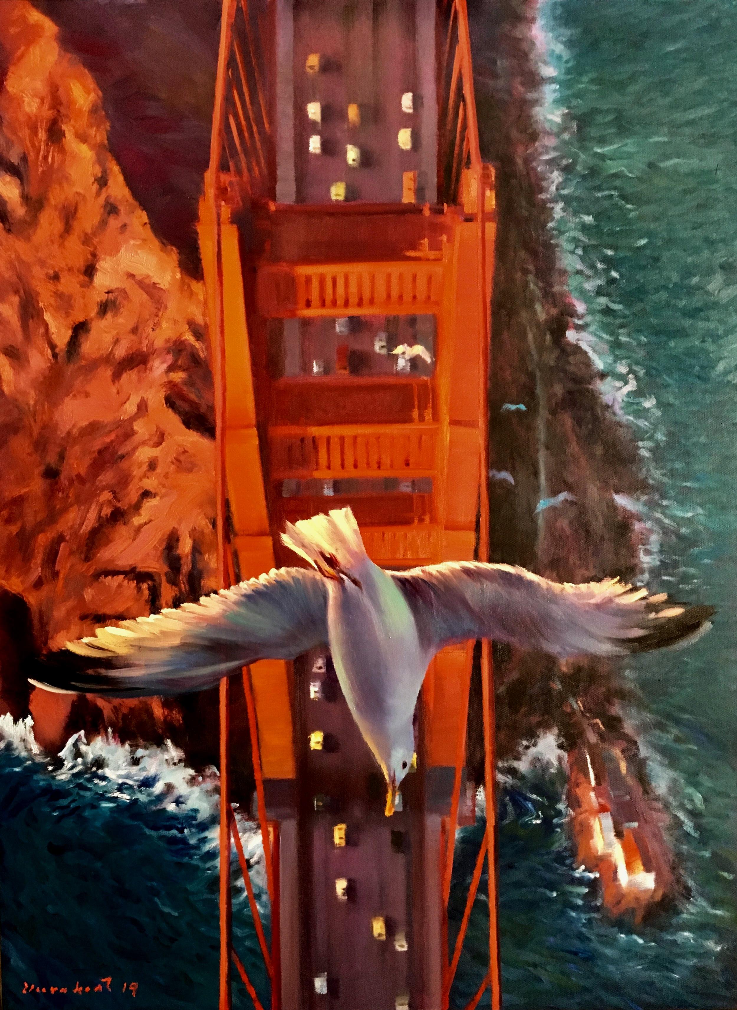 BIRD EYE VIEW # 6