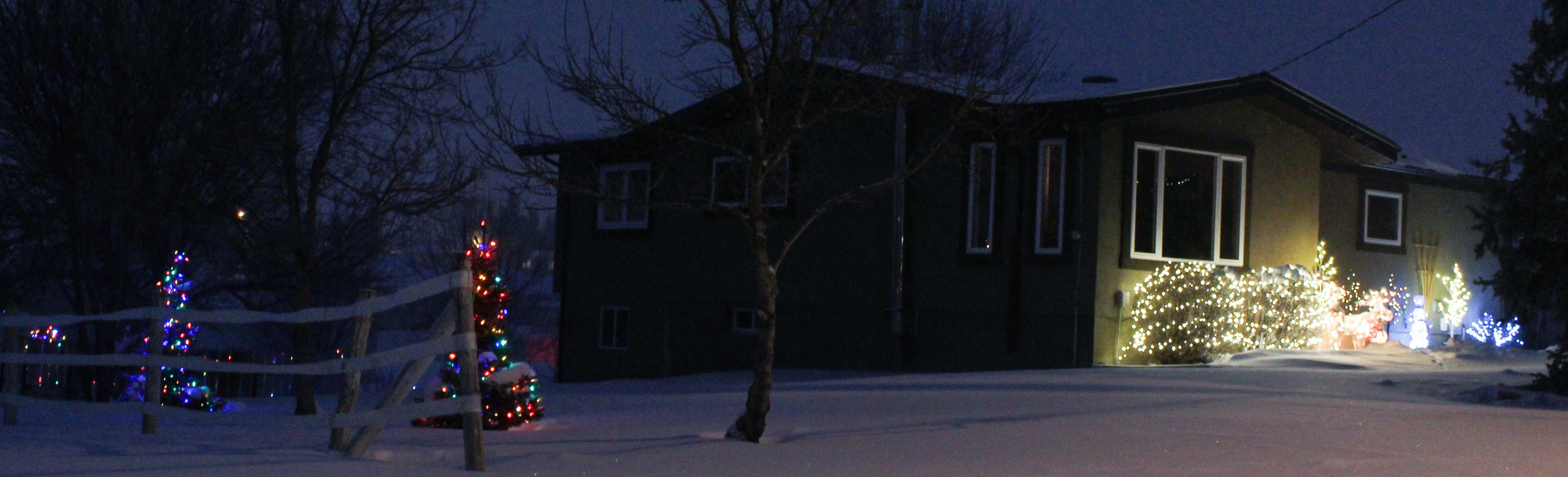 Winter Lights Winners (3 of 3).jpg