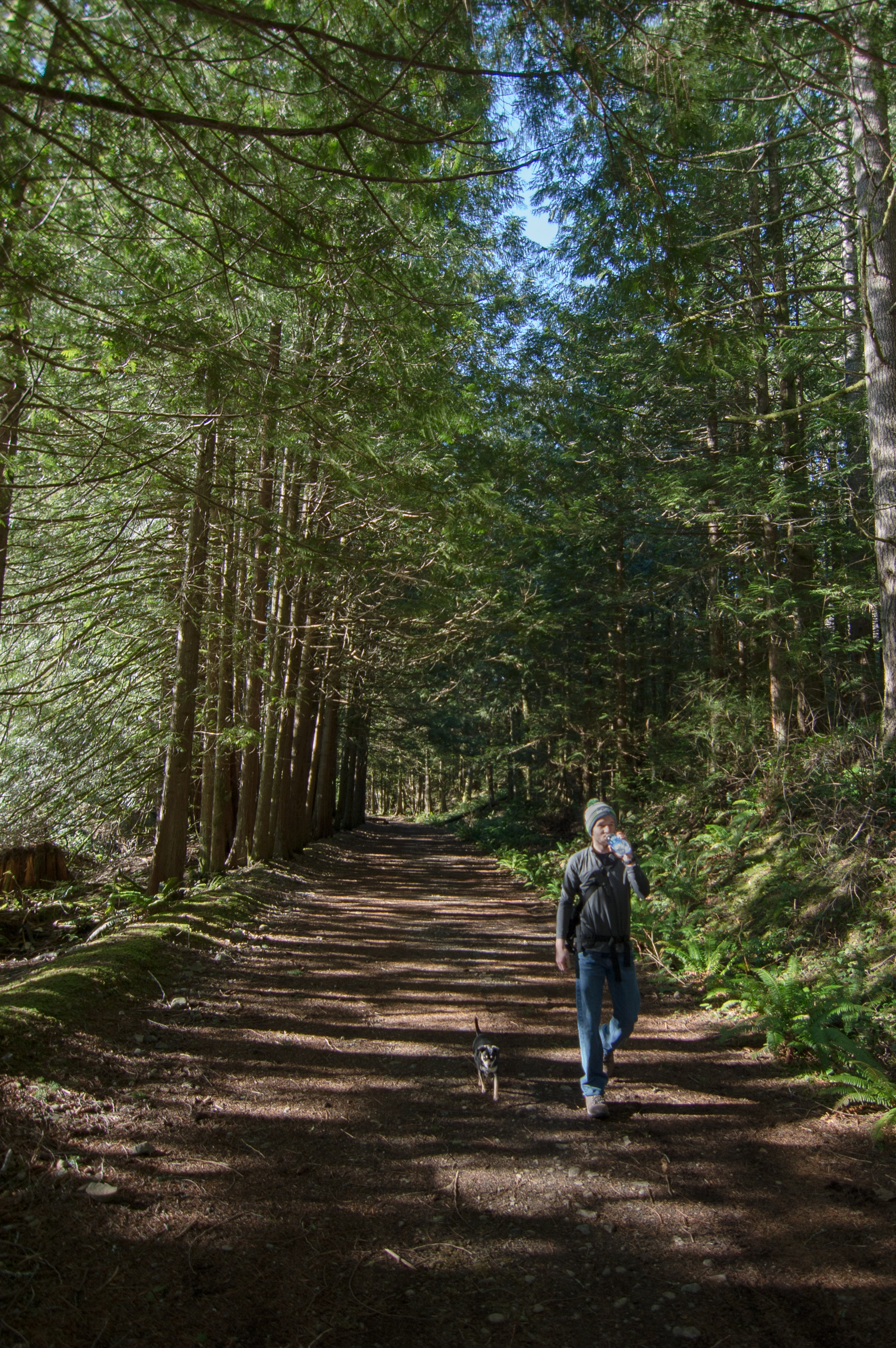 Hike-4.jpg