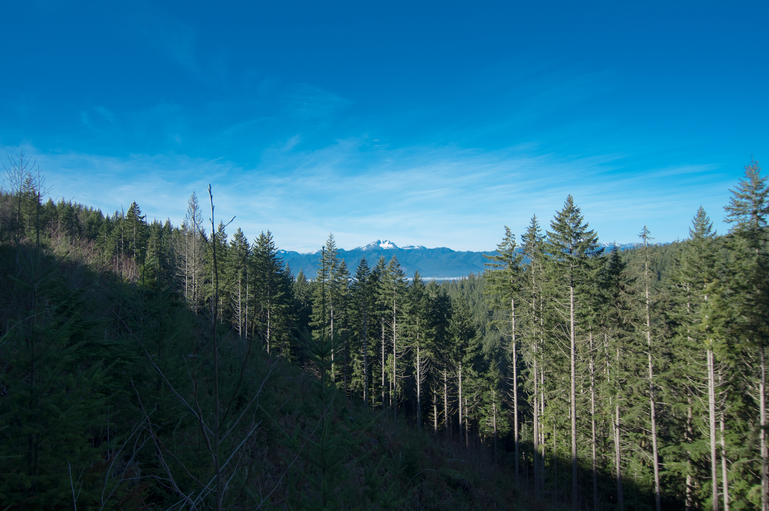 Hike-12.jpg