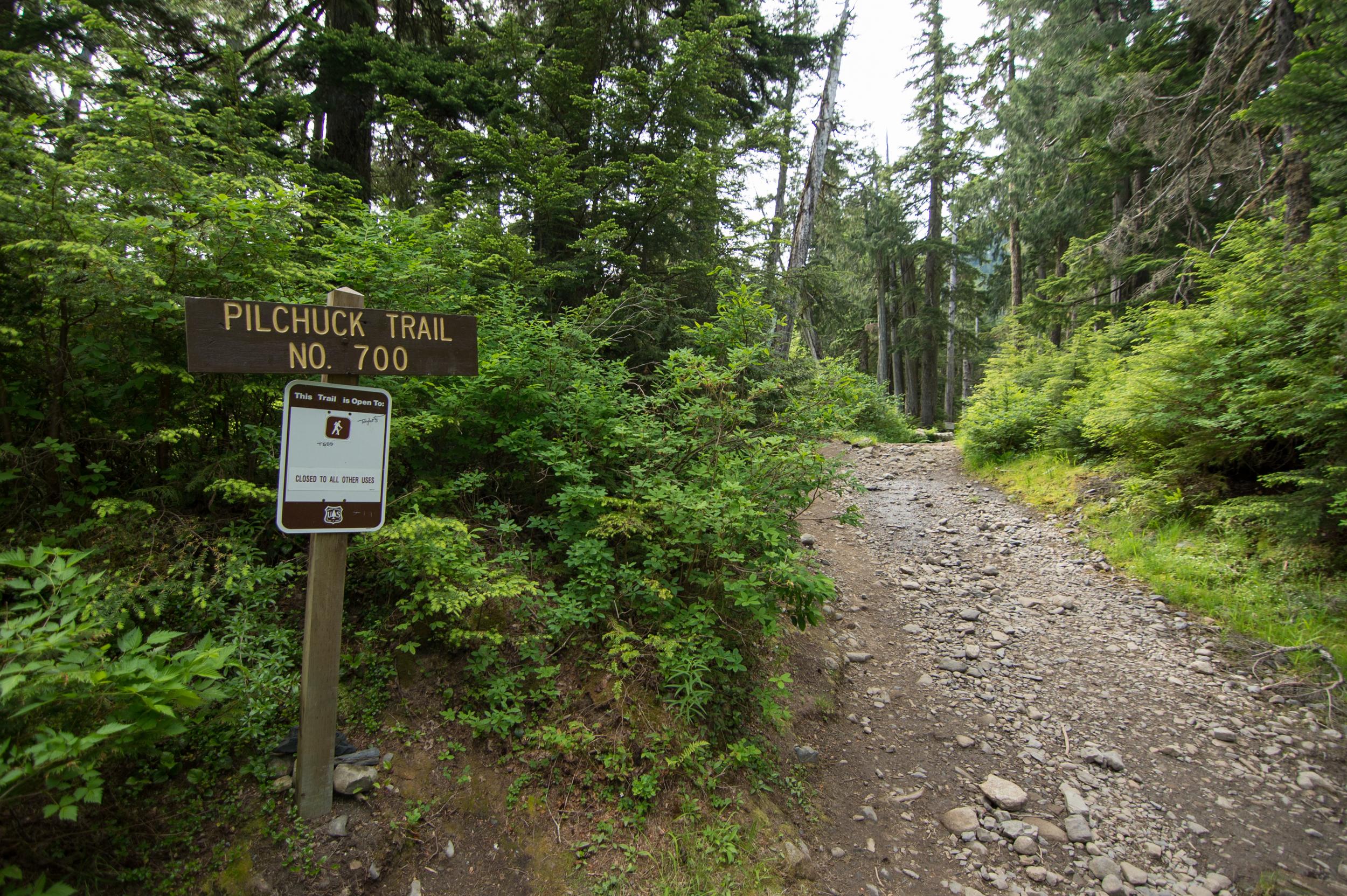 Mount_Pilchuck-4.jpg