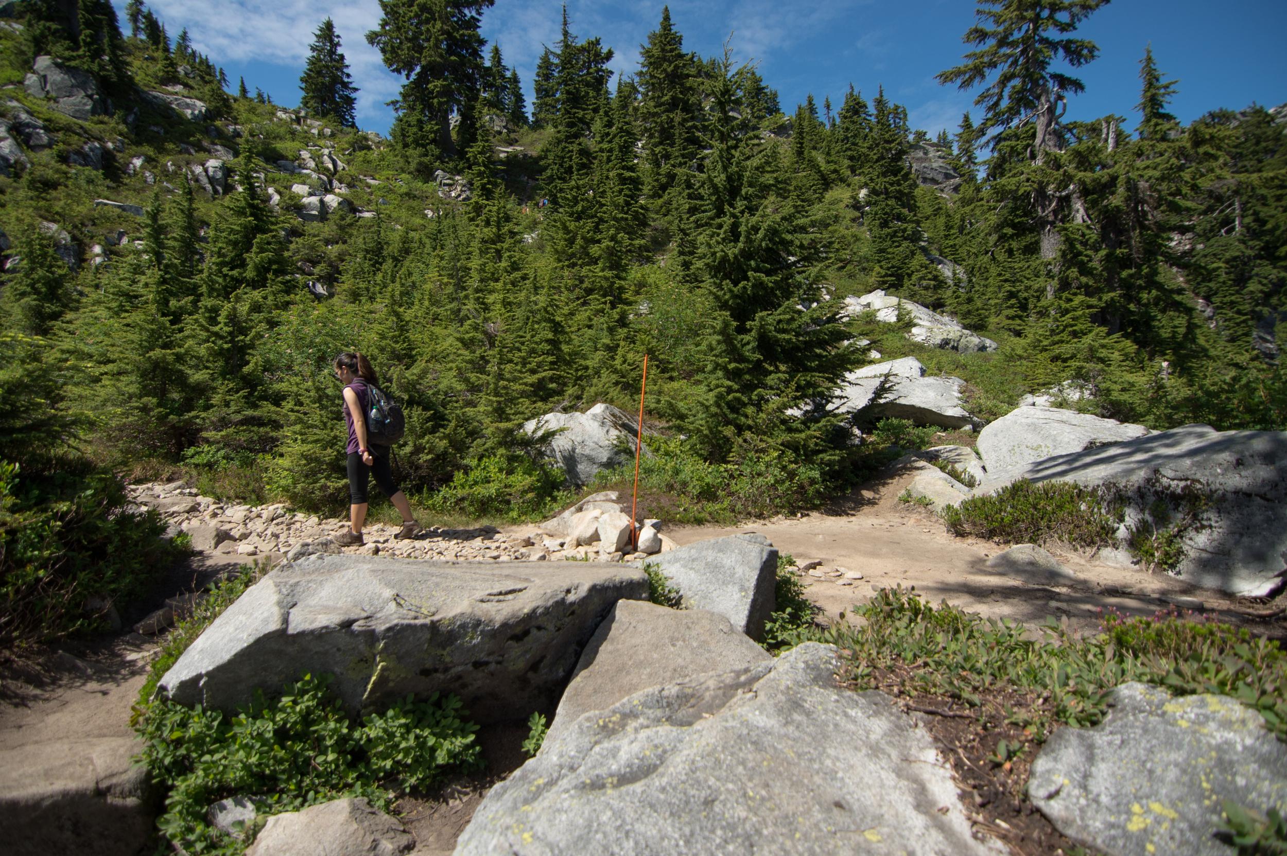 Mount_Pilchuck-20.jpg