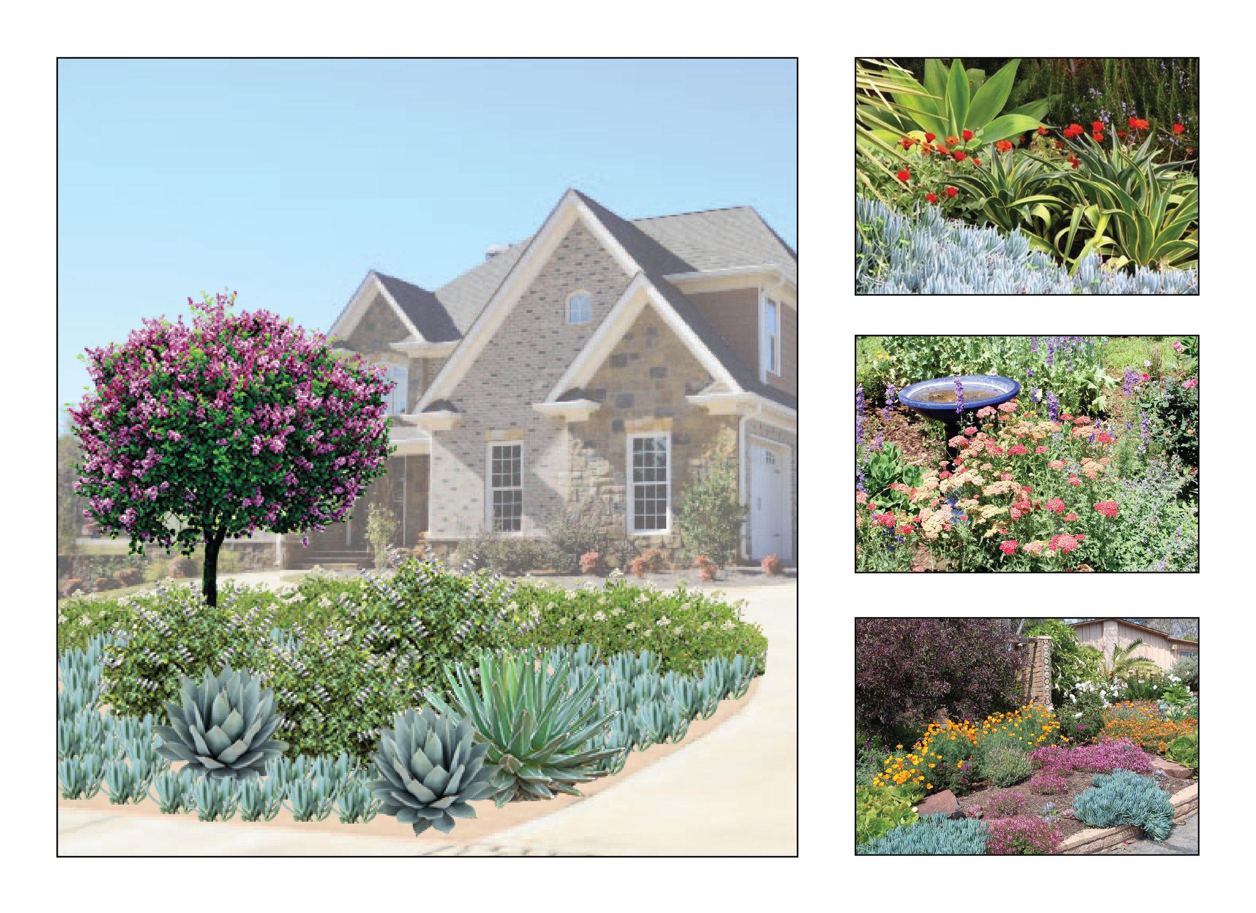 variety garden-02.jpg