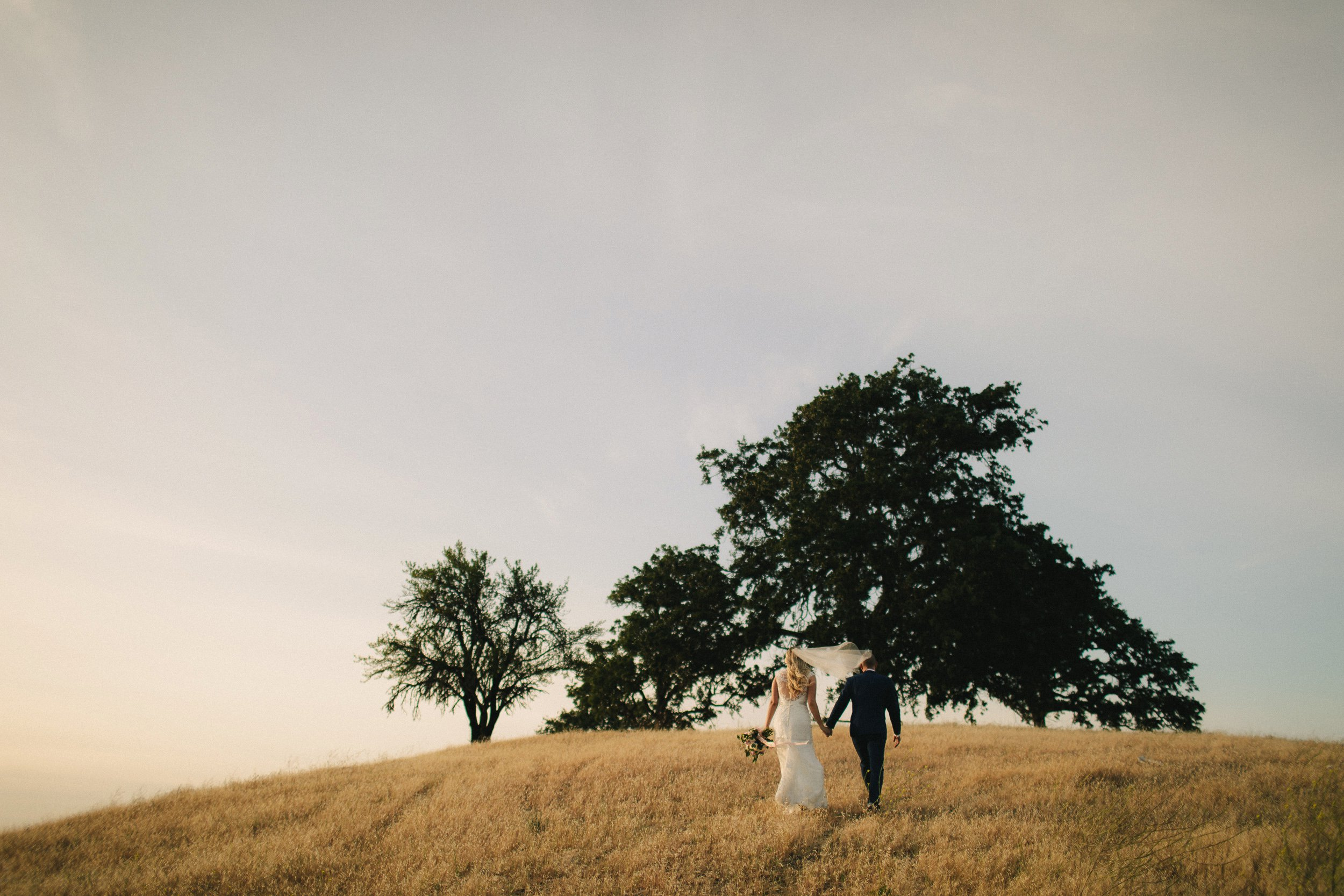 CaliforniaWedding|LindenCloverPhotography_0088.jpg