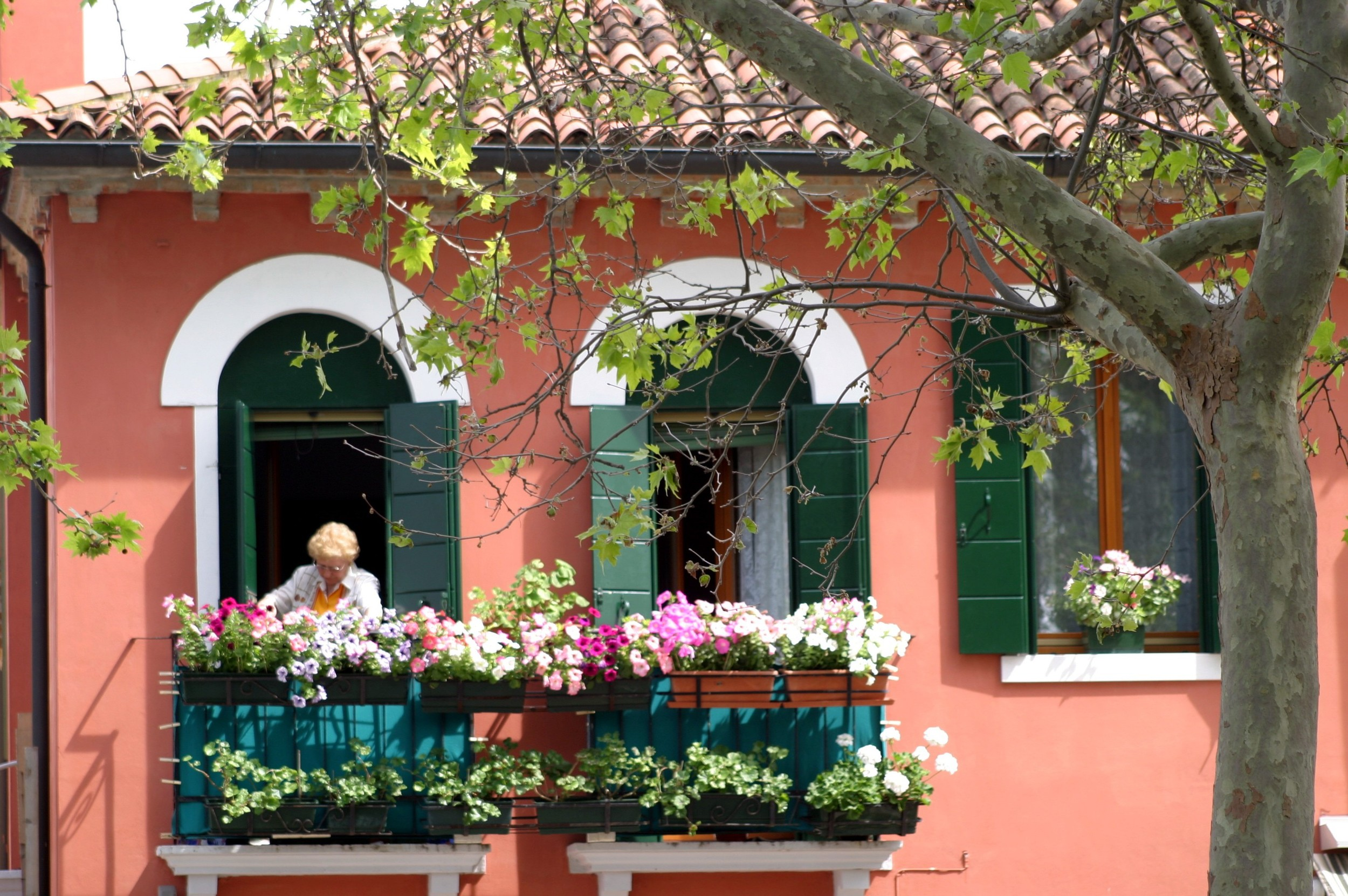Burano Lady in the Window.JPG