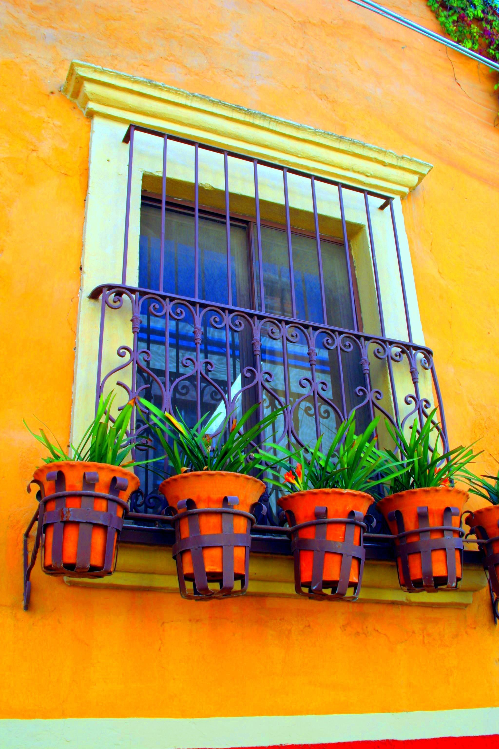 San Miguel de Allende Terracotta.jpg