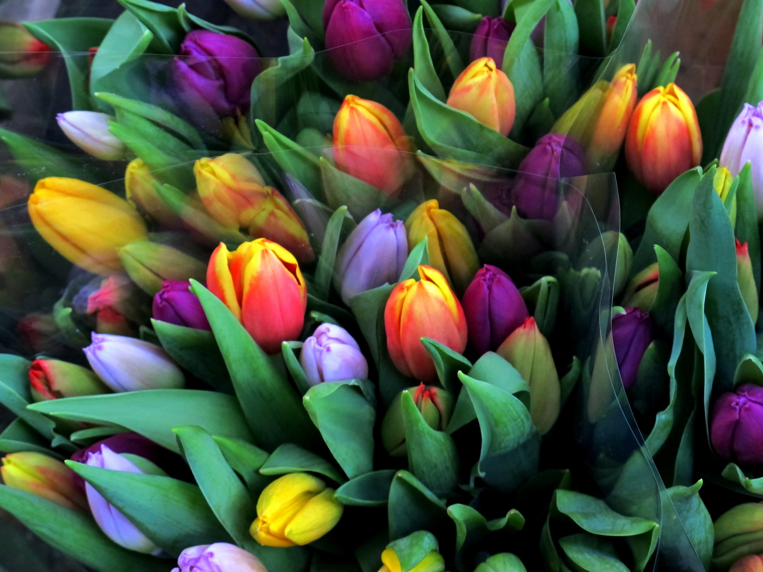 Amsterdam Spring Bouquet.jpg