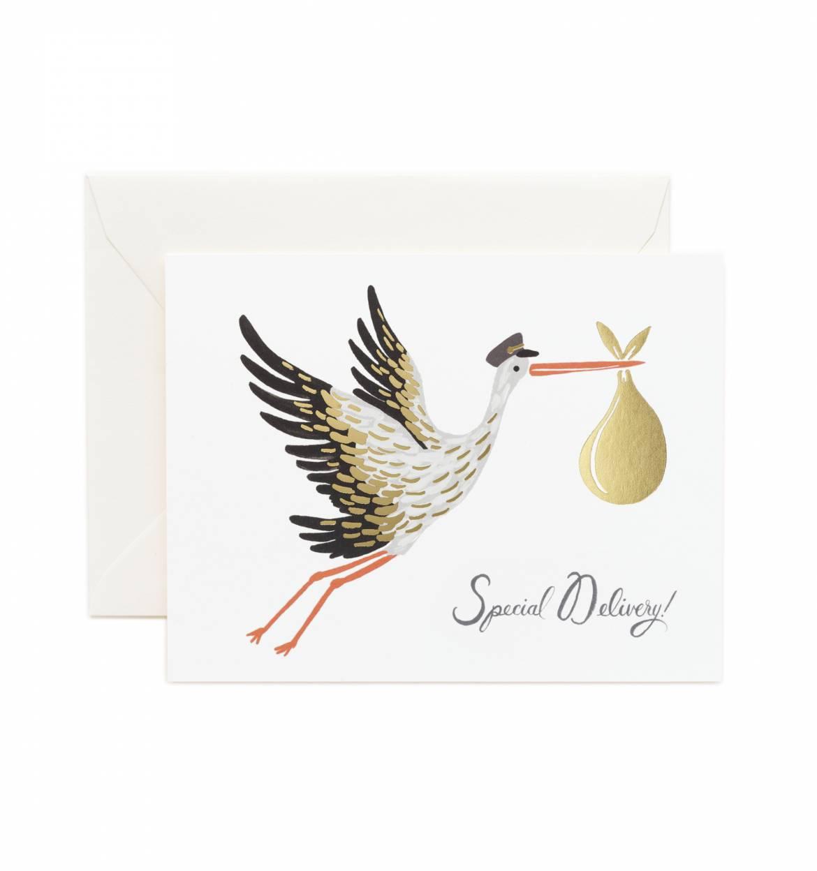 a2-gck010-baby-stork-01_1.jpg