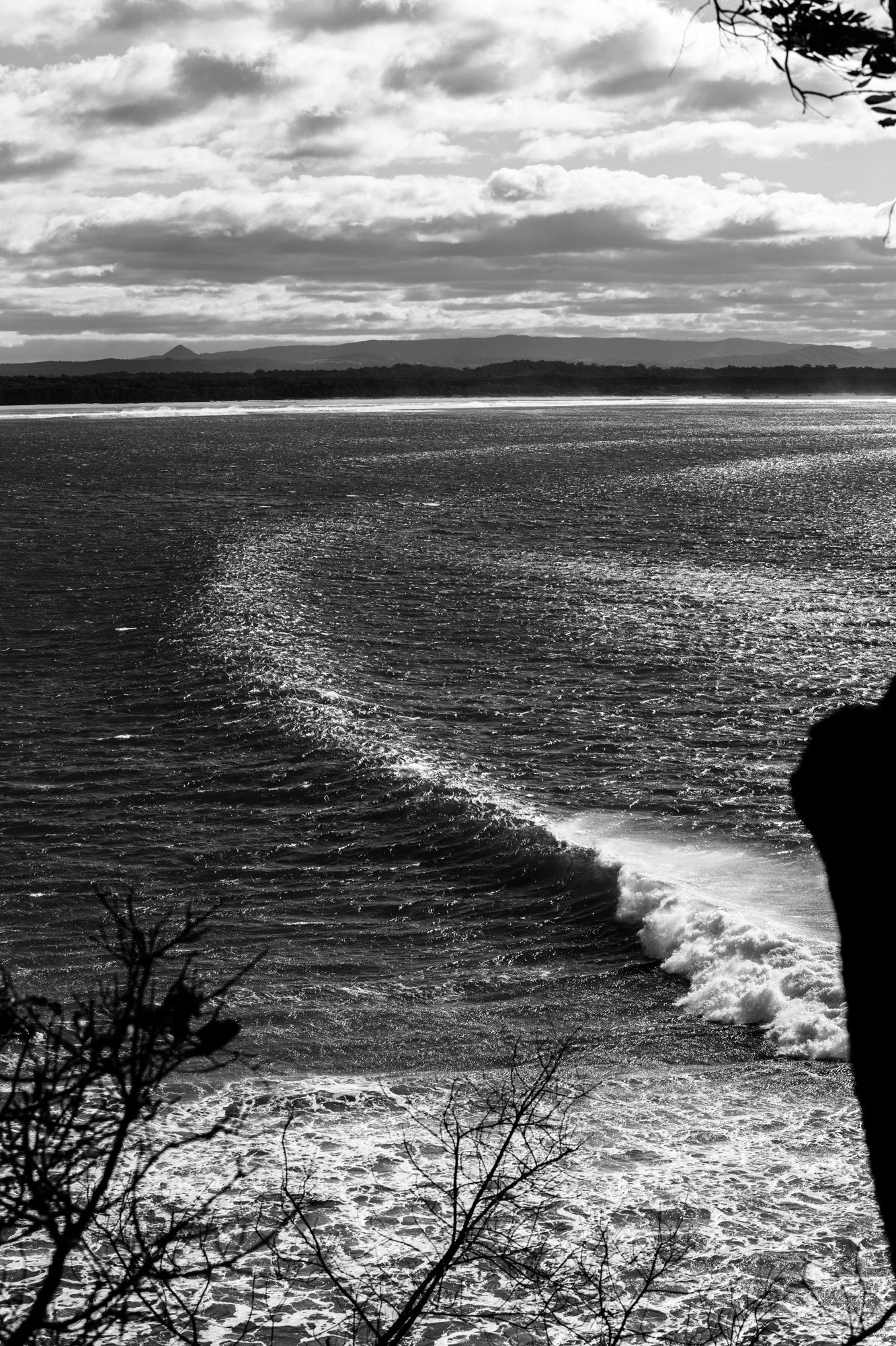 Sunny Coast Surf-21.jpg