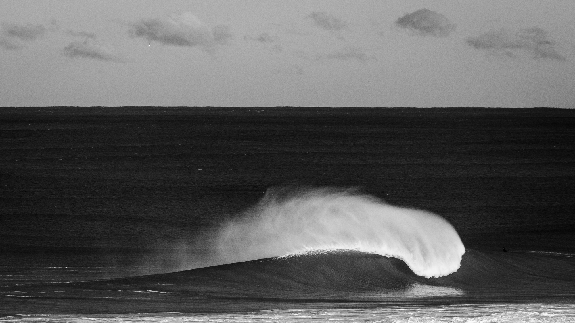 Sunny Coast Surf-25.jpg
