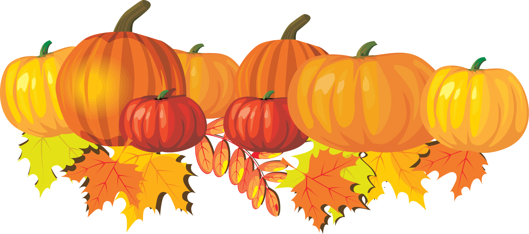 Harvest of the Month :  The featured vegetable for October is pumpkin.  Find the recipe of the month on the  Nutrition website .