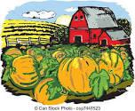 Pumpkin Donation!