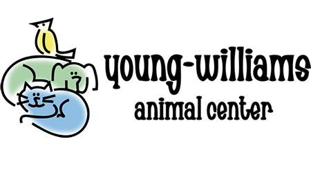 YWAC logo2.jpg
