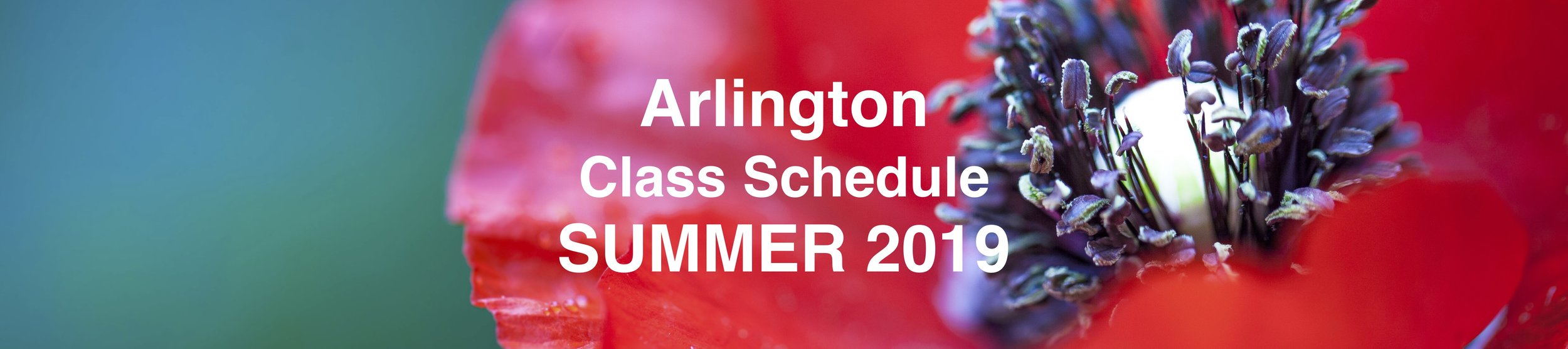 Sched Page Image Doc ARL Summer.jpg